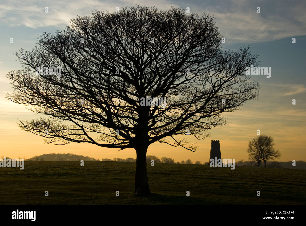A view toward The Black Mill monument. Located on the pastureland outside Beverley known as Beverley Westwood. - Stock Image
