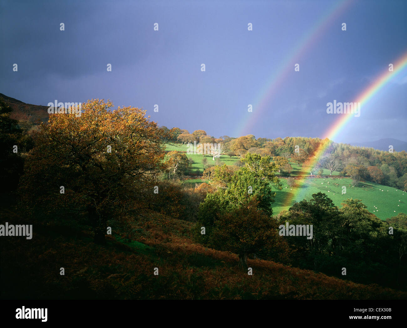 Storm light with double rainbow against dark skies over Welsh hills. - Stock Image