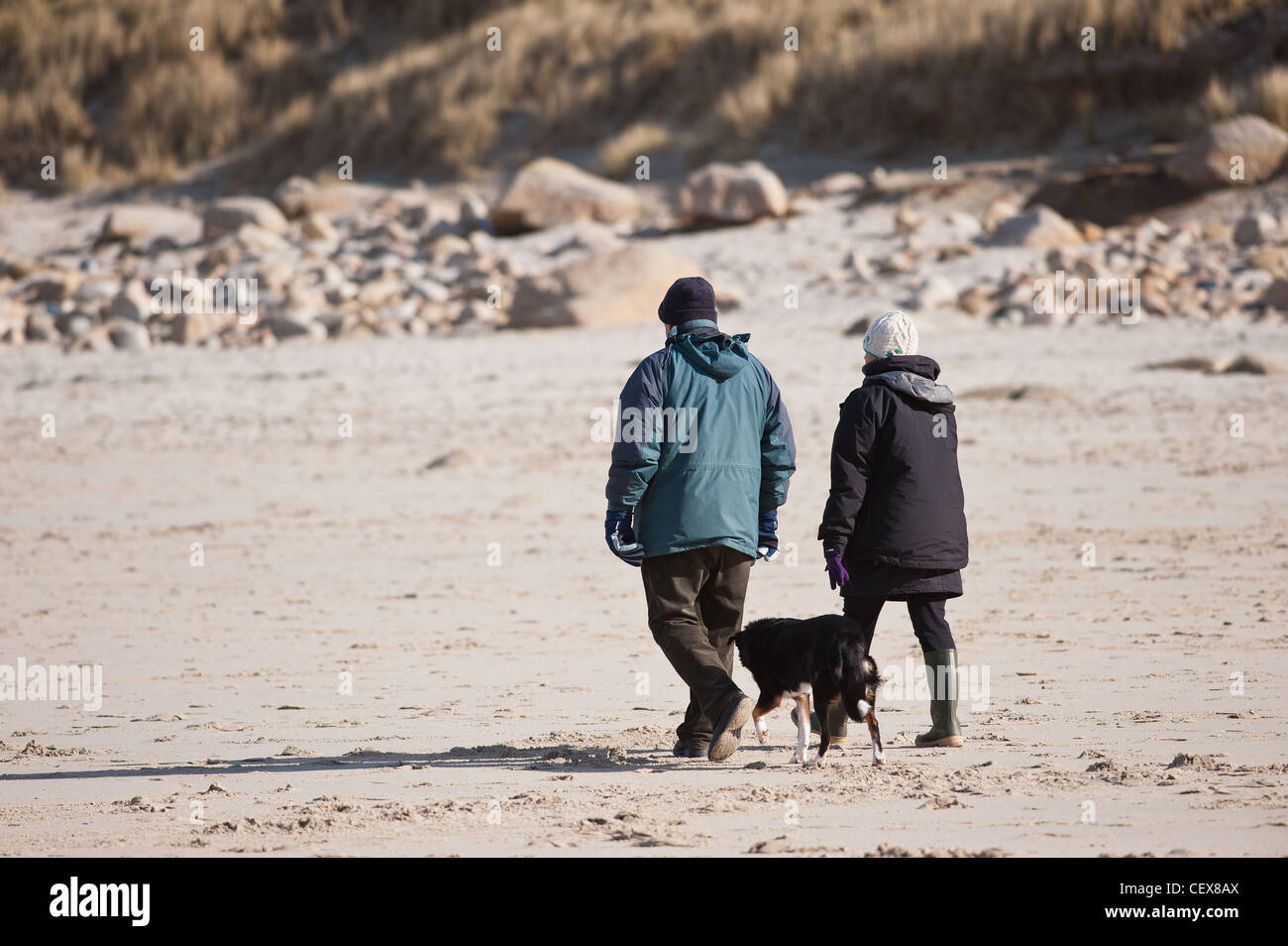 Dog walkers on the beach at Sennen. - Stock Image