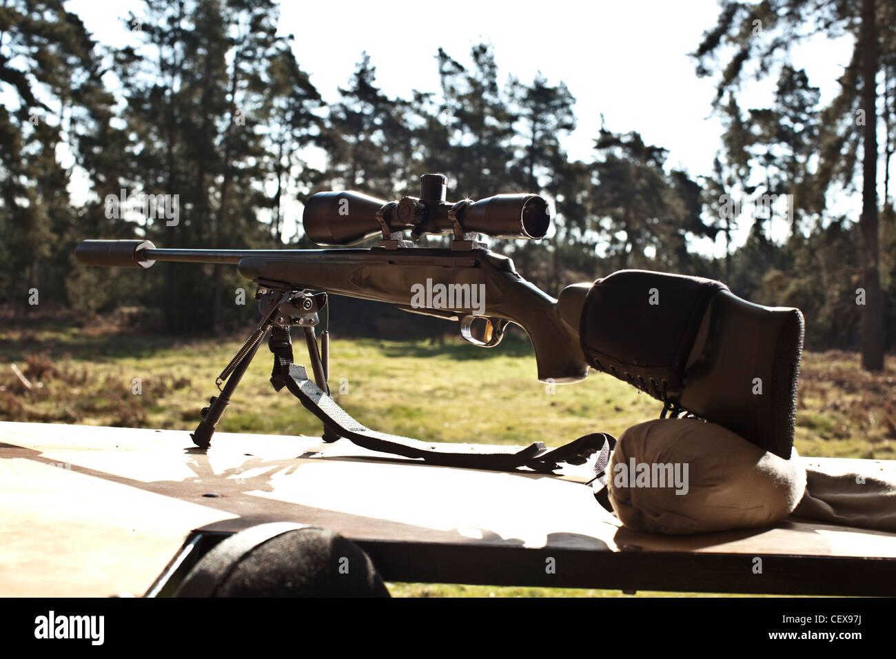 Deer hunting rifle, gun in Thetford forest, UK - Stock Image