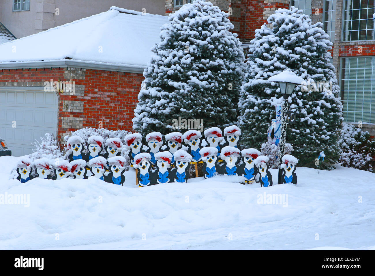 Christmas In Calgary Canada.Winter Scenes From Calgary Alberta Canada Choristers At