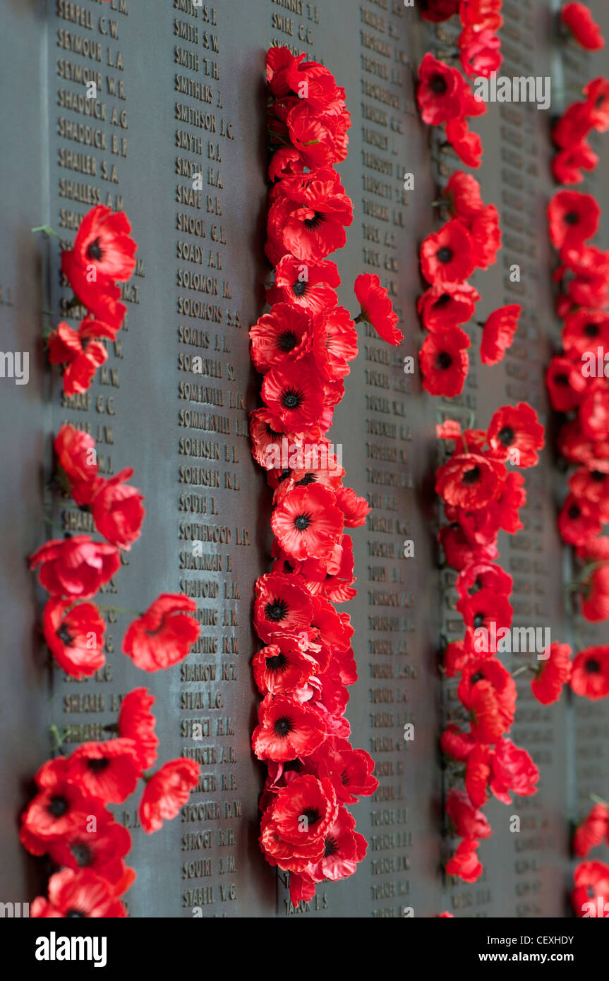 Poppies pinned next to the names of fallen loved ones on the Australian War Memorial in Canberra Australia - Stock Image