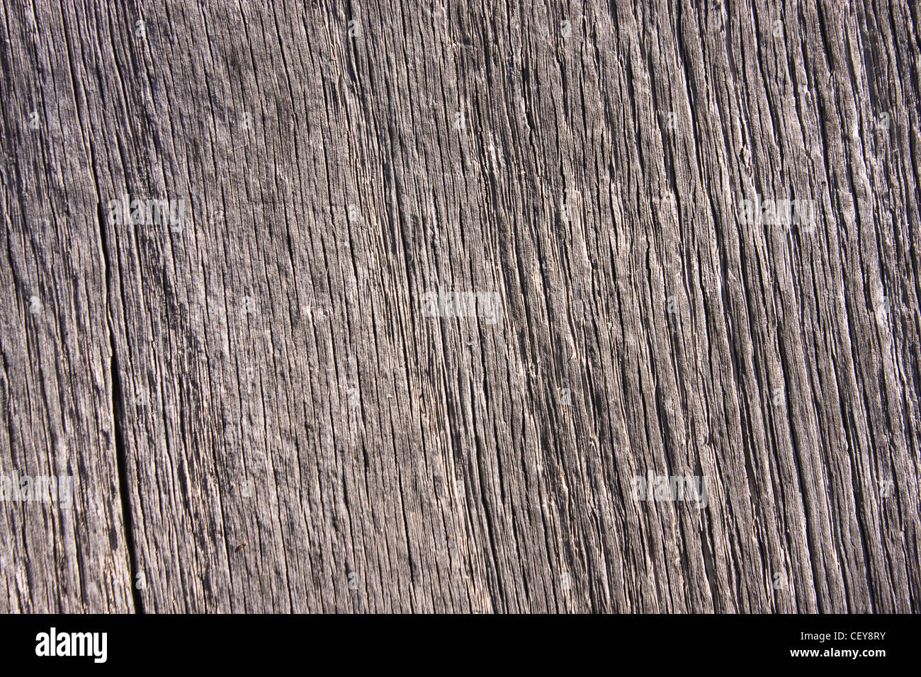 Texture of an wood board, details visible - Stock Image
