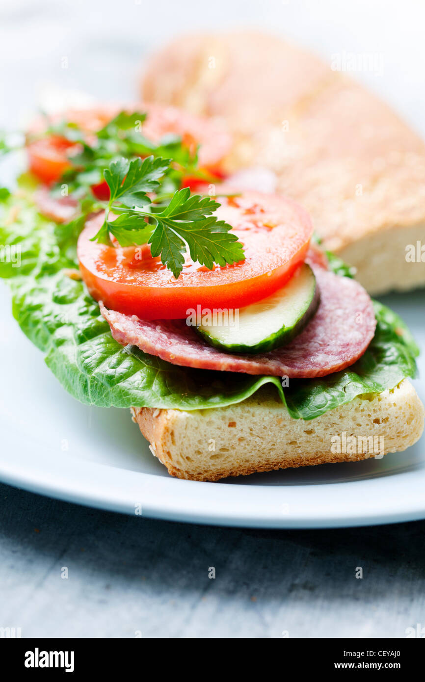 sandwich with lettuce, salami,tomato, cucumber and parsley - Stock Image