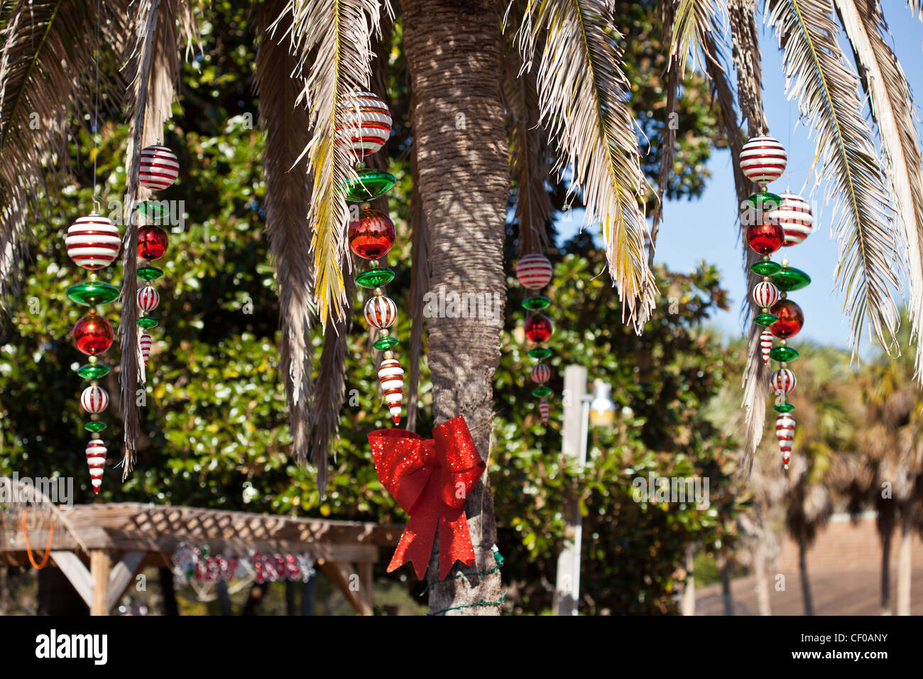 christmas decorations in palm tree at weeki wachee springs state park stock image