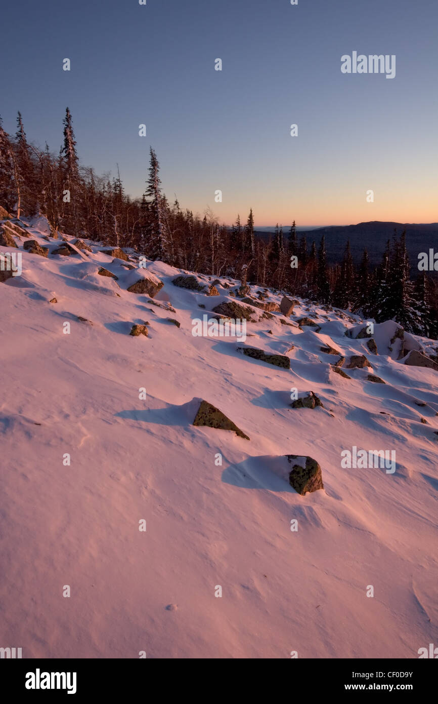 Mountain slop in sunset pink light. Winter landscape. National park Taganay. South Ural mountains. Russia. - Stock Image