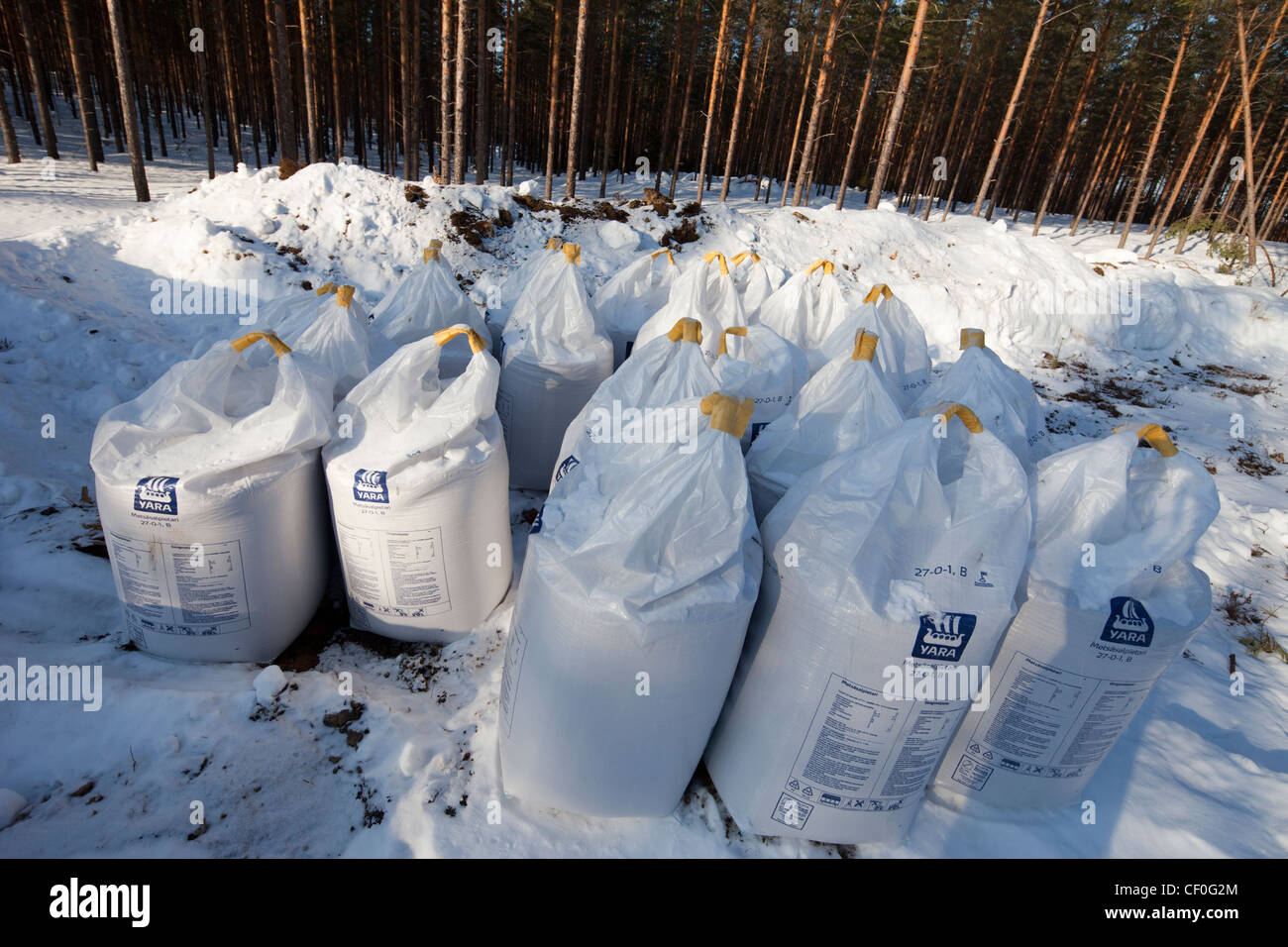 Inventory of 650 kg sacks of saltpeter for fertilizing forest , Finland Stock Photo