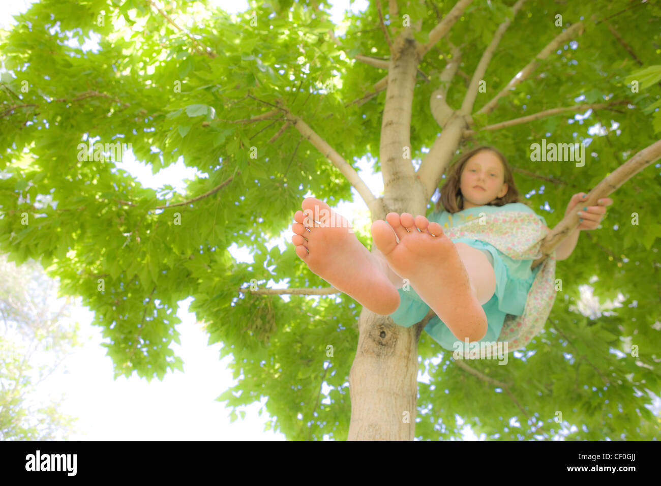 Girl resting in a tree, Spring, dreamy. - Stock Image