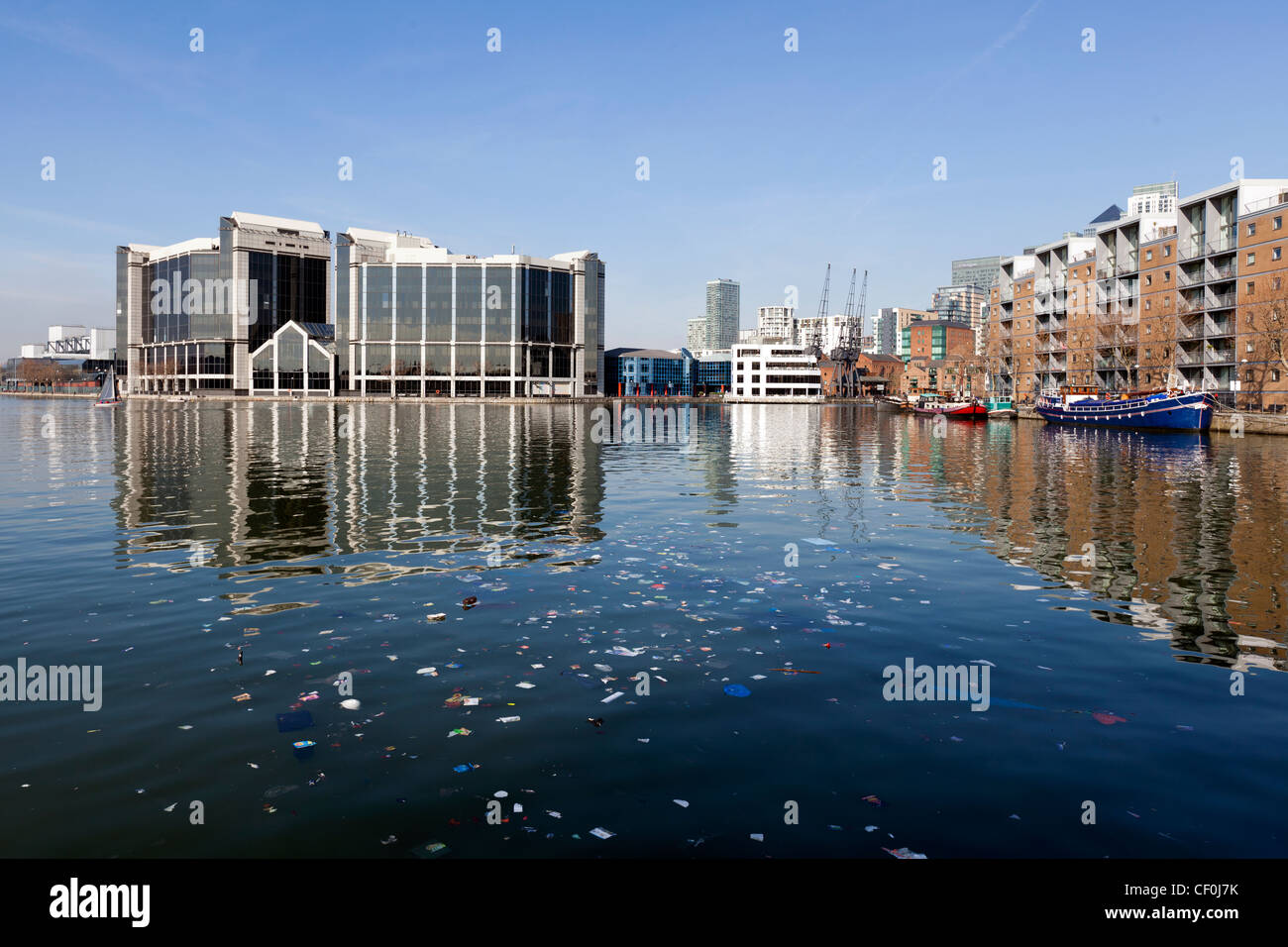 Pollution floating in Millwall Outer Dock, Isle of Dogs, Tower Hamlets, London, UK. - Stock Image