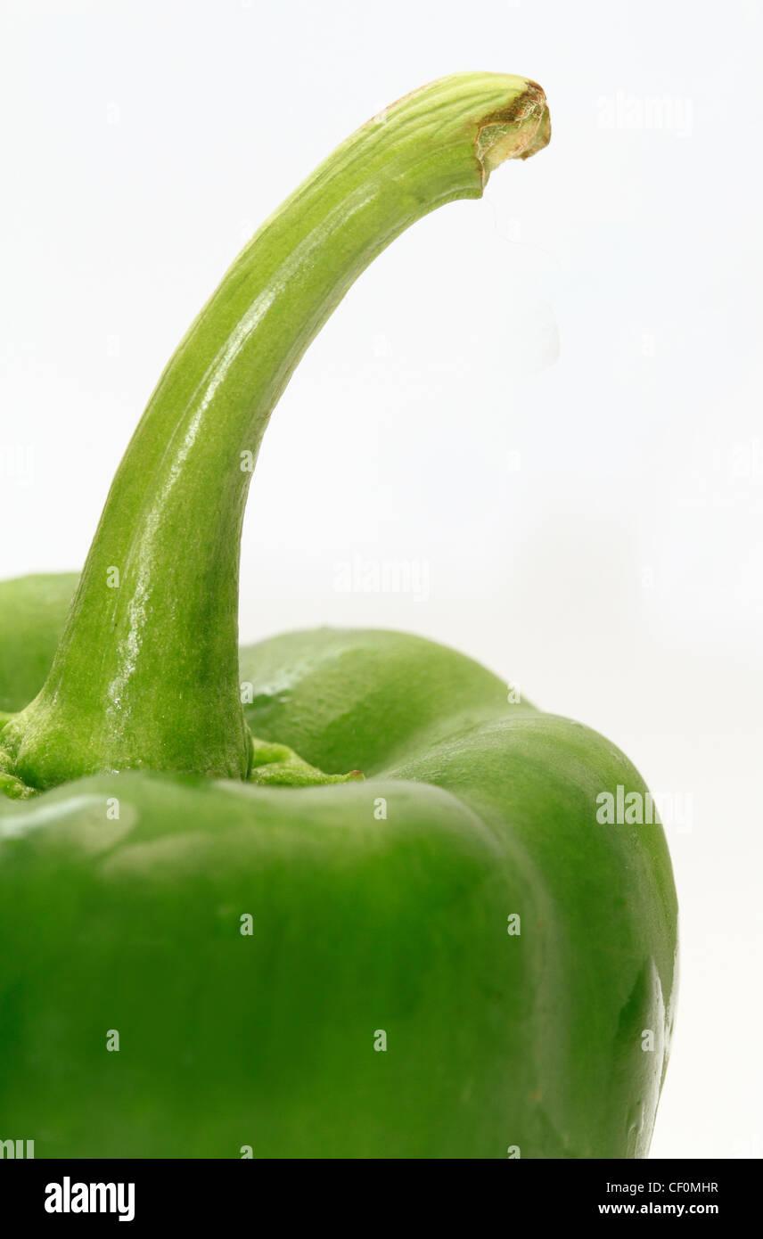 Green Bell Pepper Detail - Stock Image