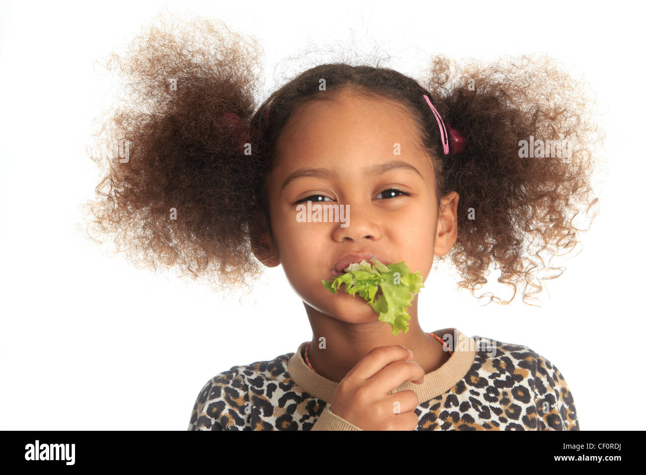 Black asian african american