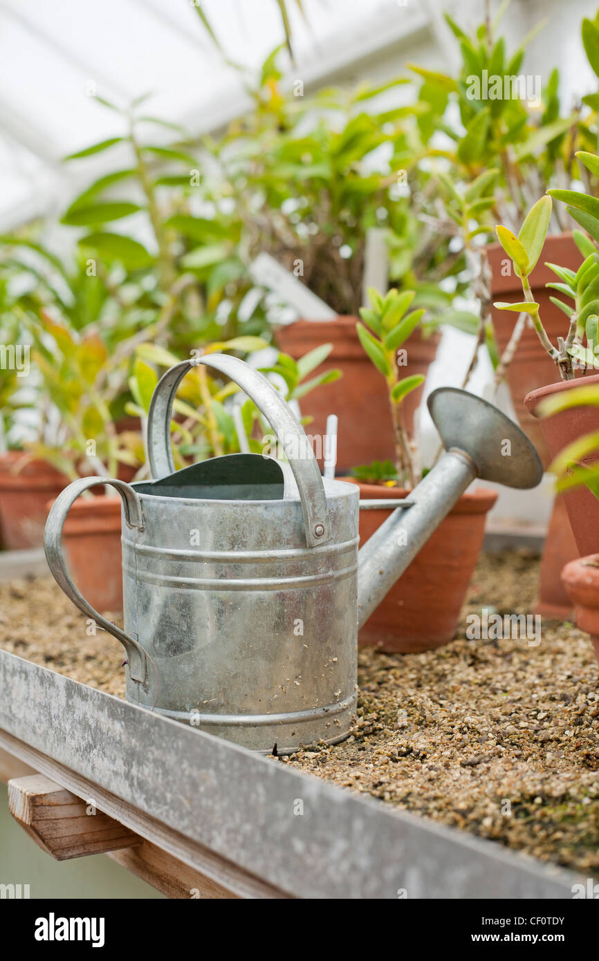 Watering can. - Stock Image
