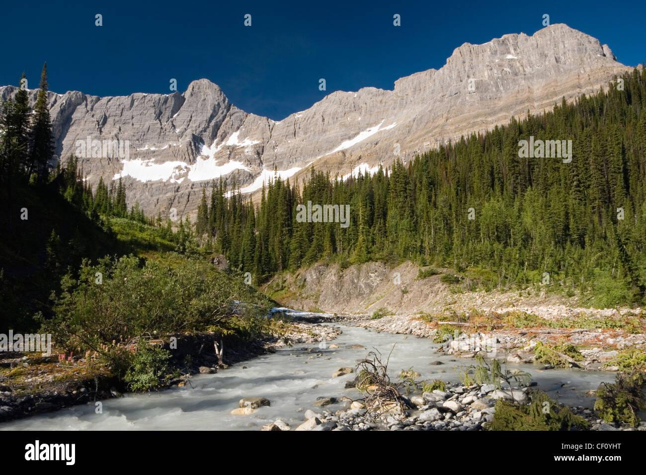 Tumbling Creek on the Rockwall Trail, Kootenay National Park of Canada, British Columbia, Canada - Stock Image