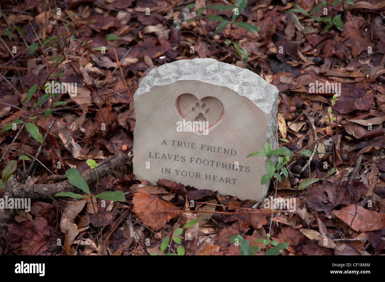 gravestone marking the burial of family pets North Florida - Stock Image