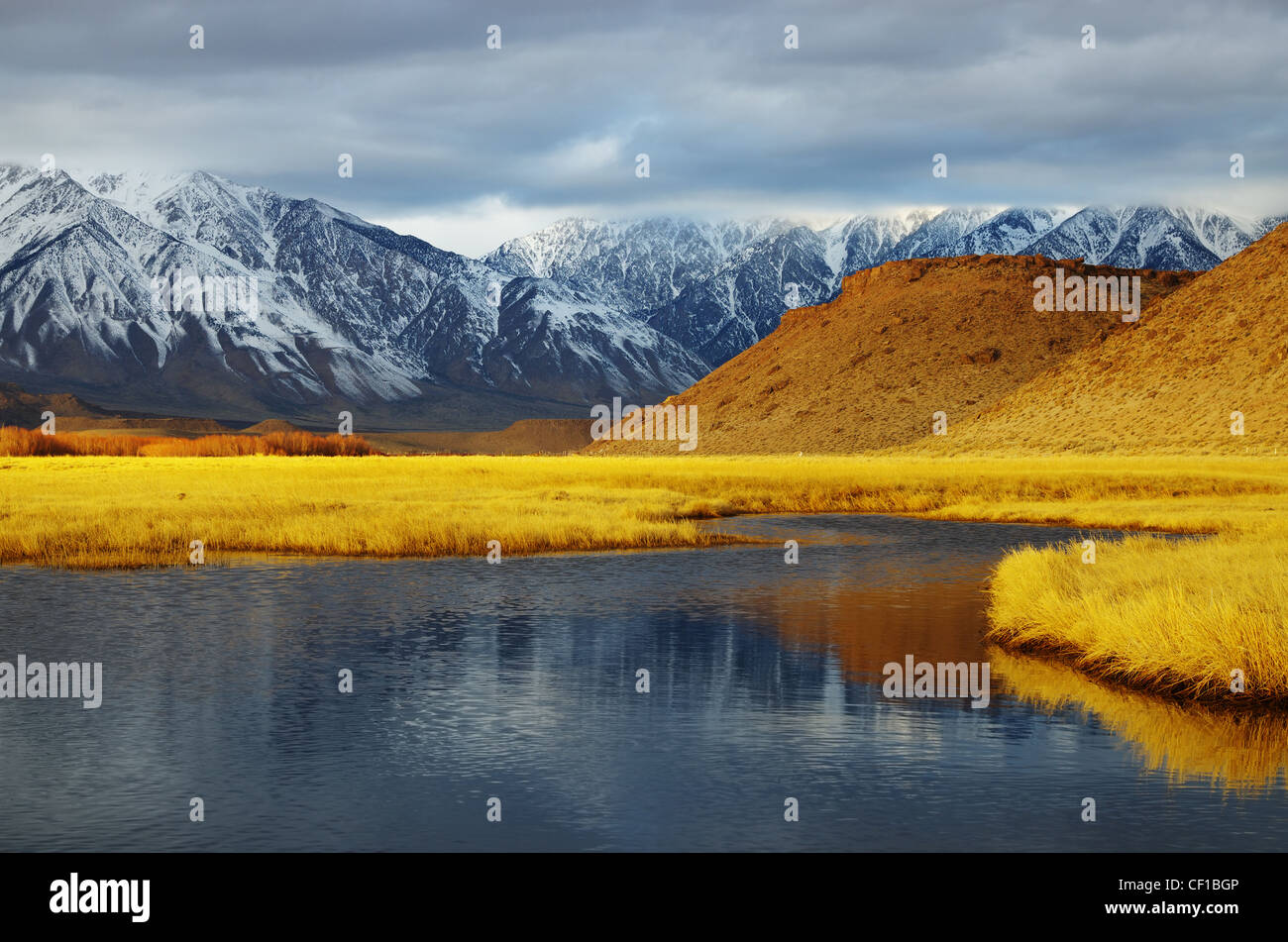 overcast winter mountain valley landscape with golden meadow from the Owens Valley - Stock Image