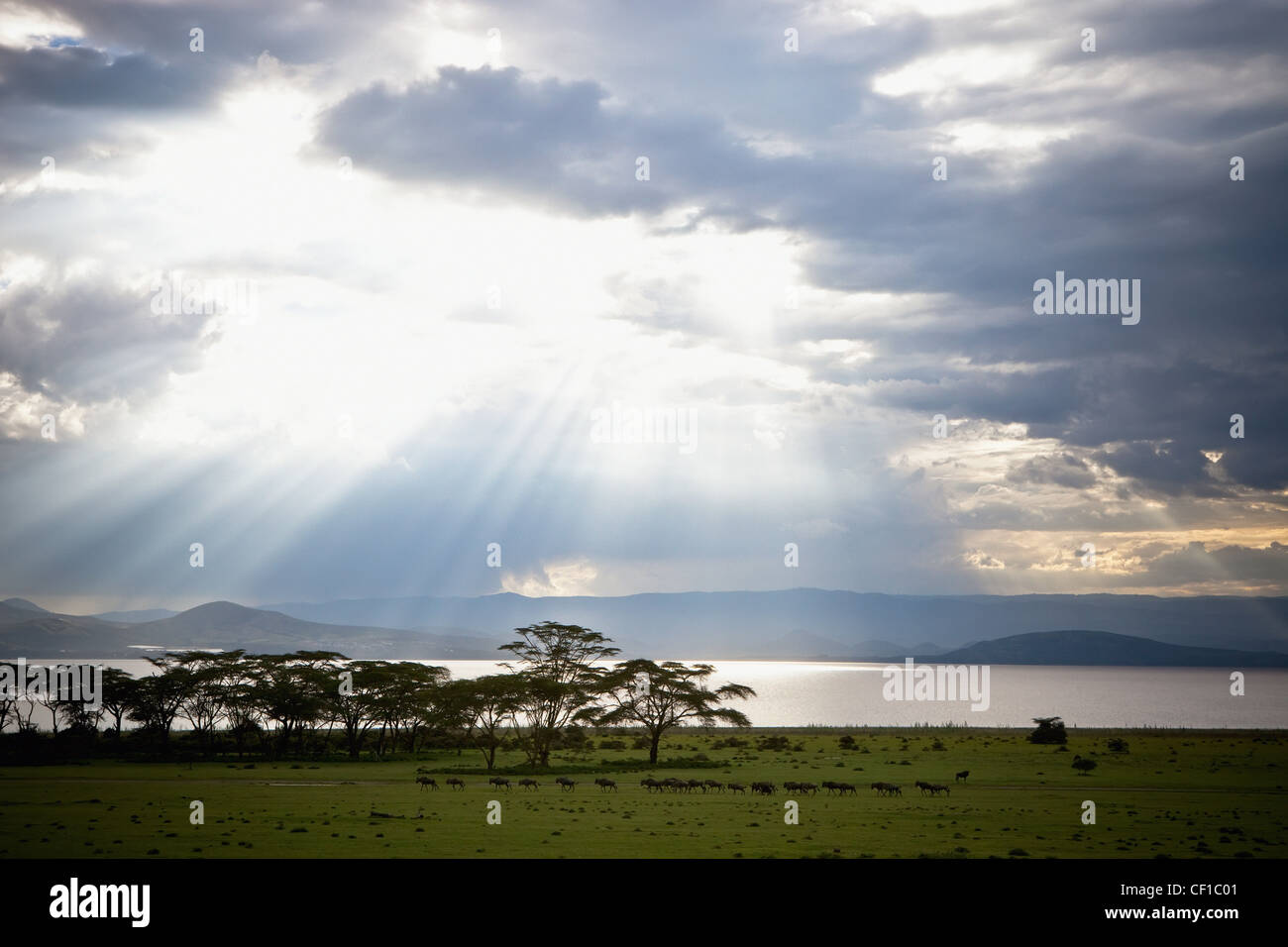 Sunlight Shines Down Through The Clouds Onto A Lake; Kenya Stock Photo