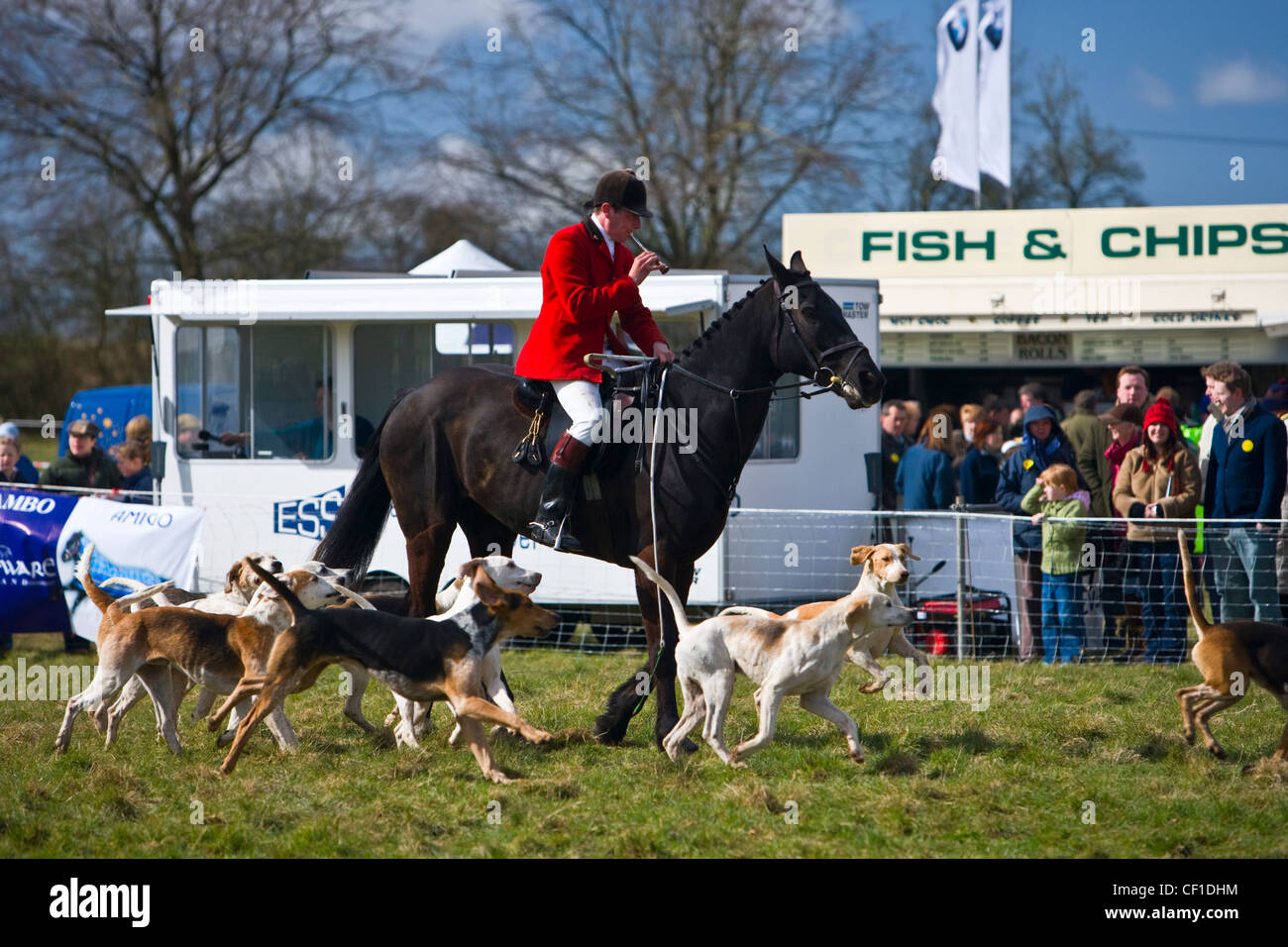 The master of foxhounds blows his horn to signify the start of the Parade of the Vine and Craven Foxhounds at the Stock Photo