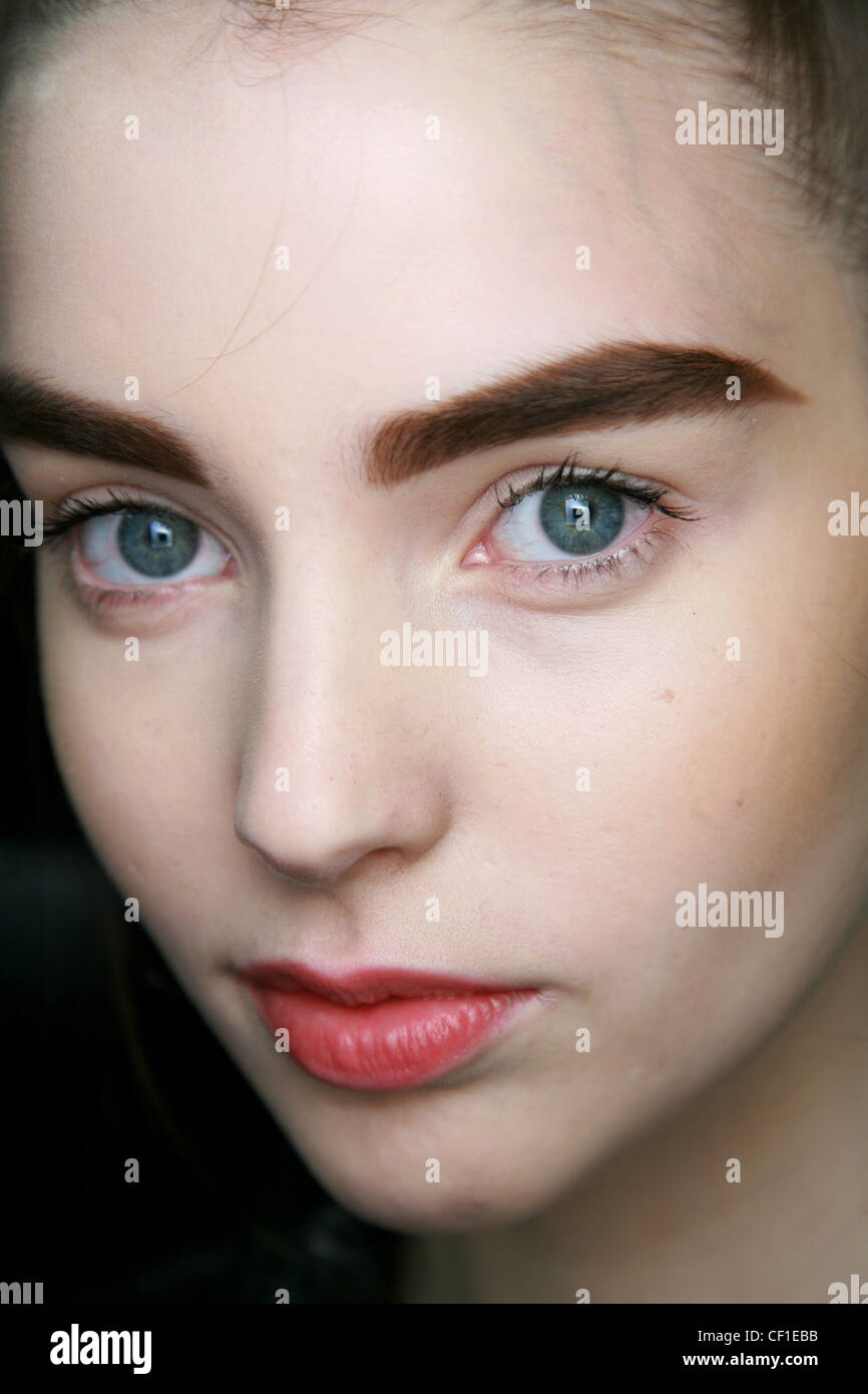Eyebrows Beauty Thick Stock Photos Eyebrows Beauty Thick Stock