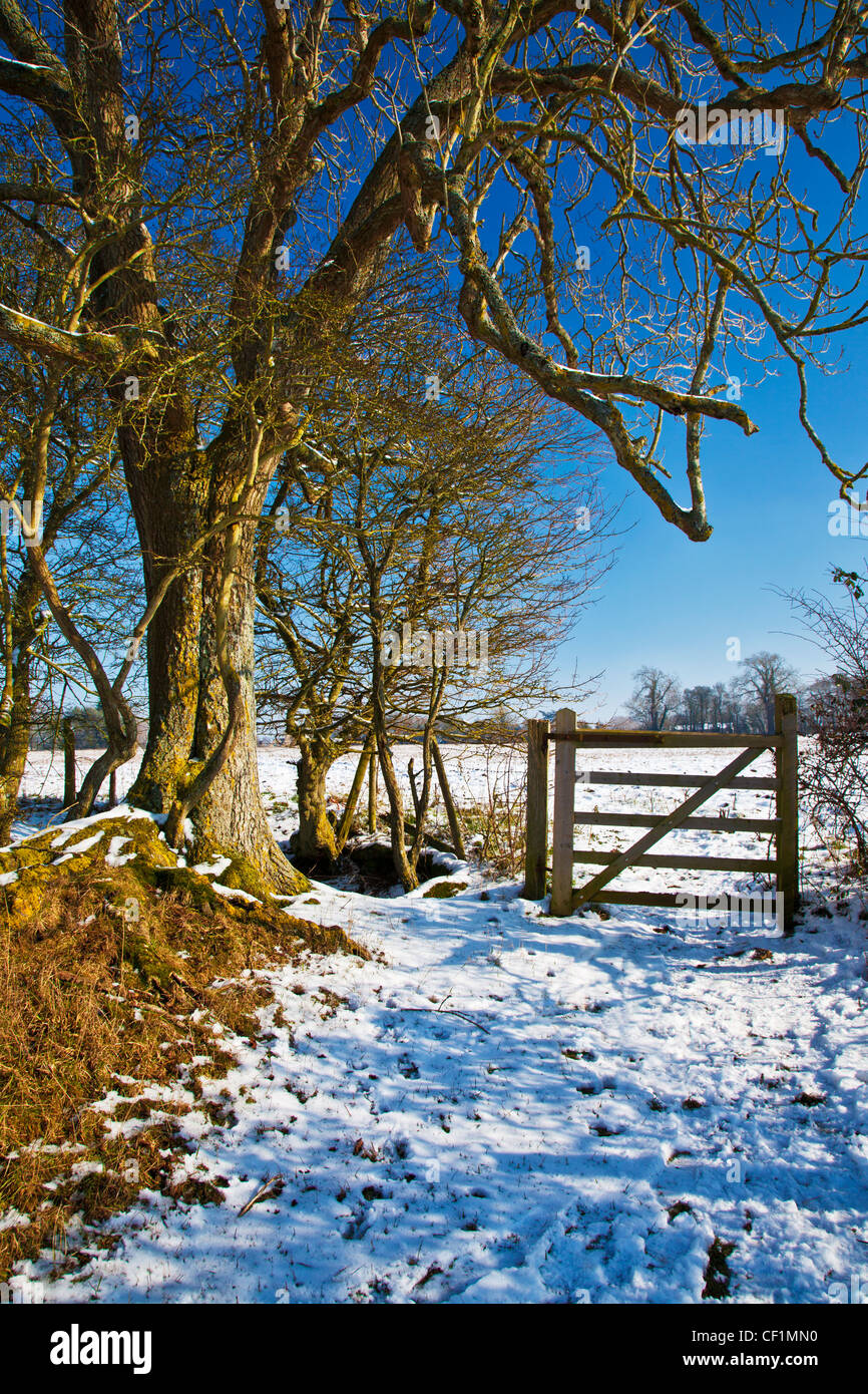 A bright snowy sunny Cotswold view near the Ampneys, Gloucestershire, England, UK - Stock Image