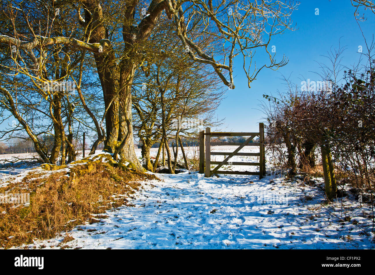 A bright snowy sunny Cotswold view near the Ampneys, Gloucestershire, England, UK Stock Photo