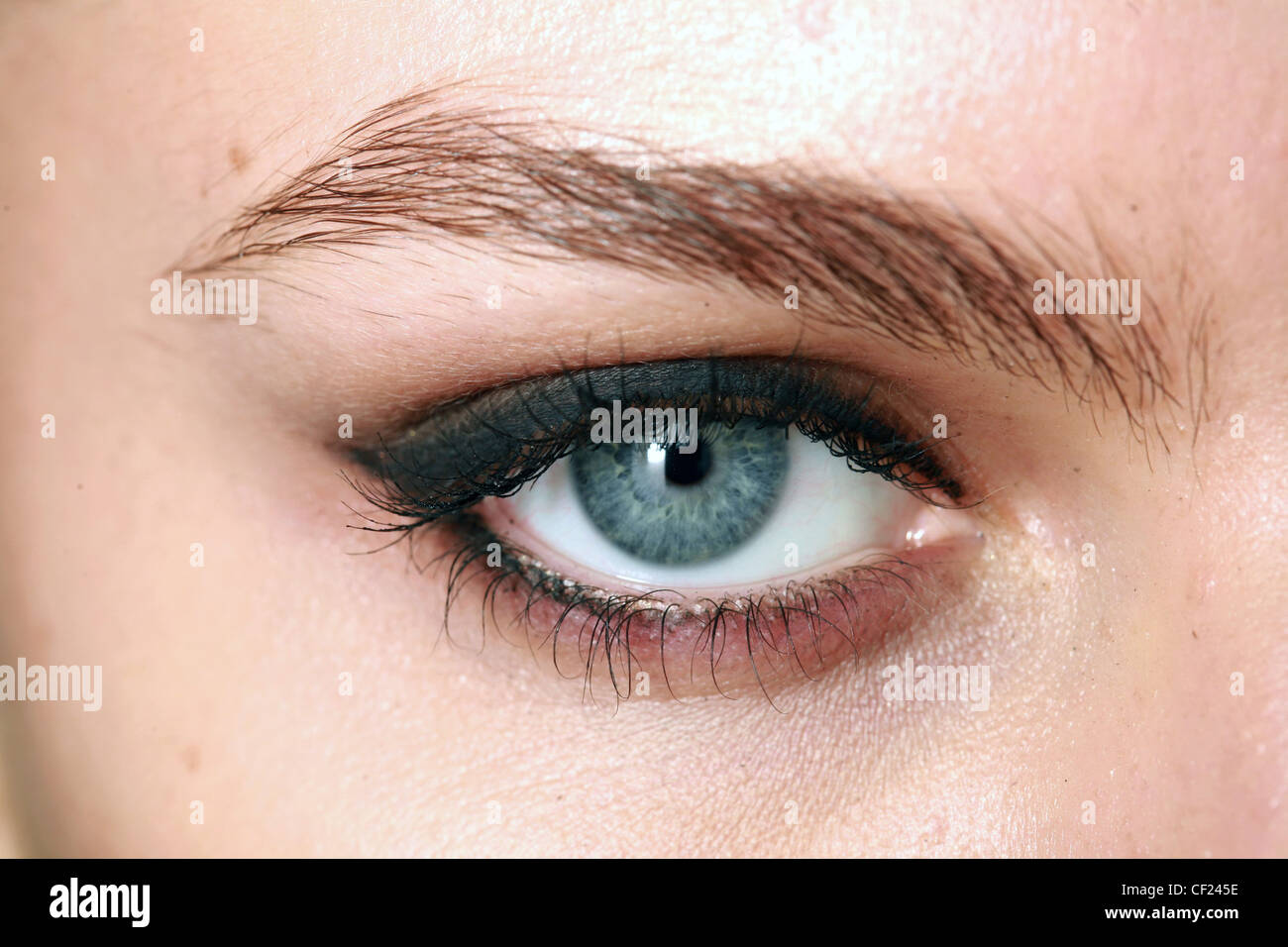 211ca3a5e Gucci Milan Backstage Spring Summer Close up of eye with brown eyeshadow  and dark blue eyeliner