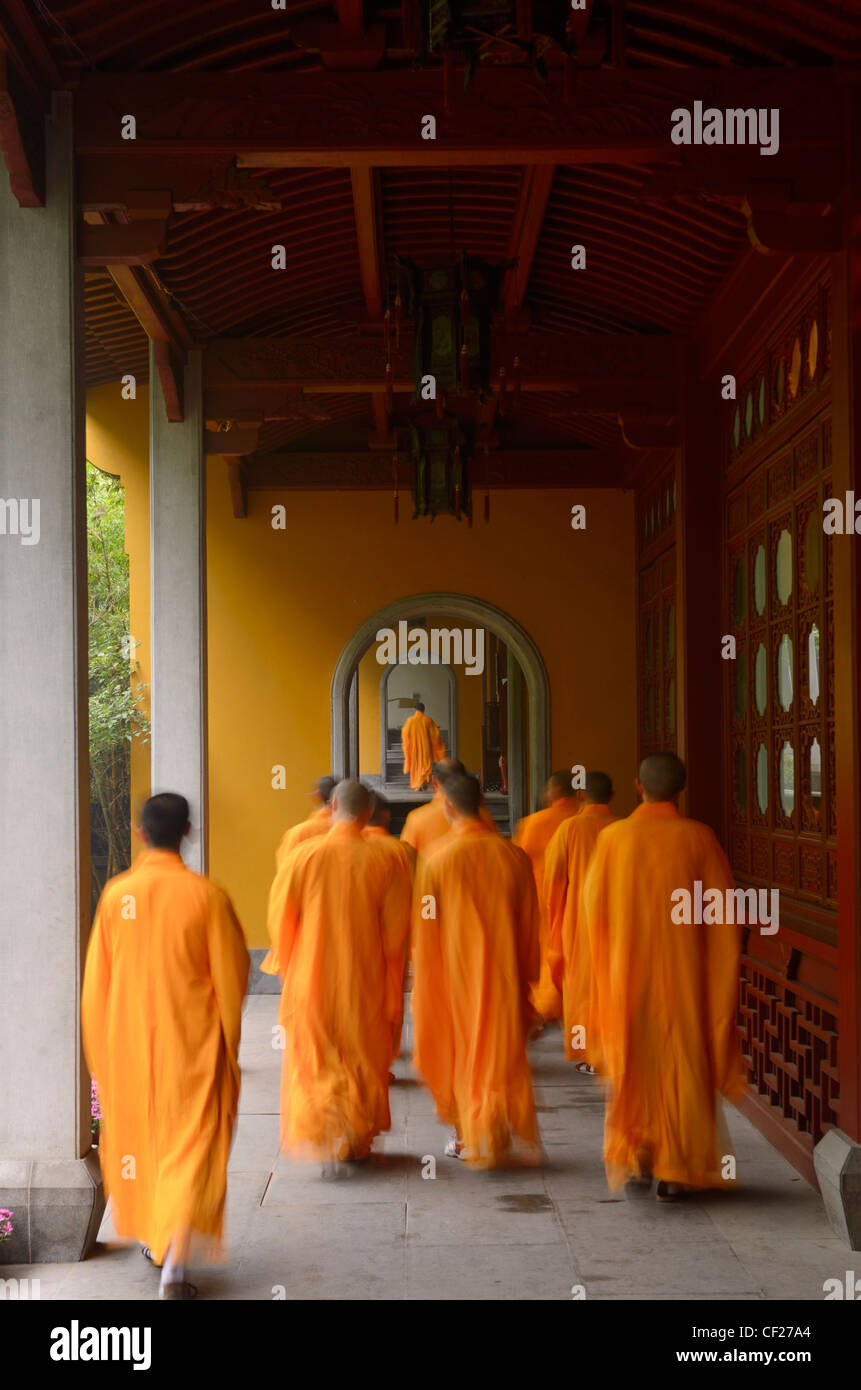 Buddhist monks in orange robes congregating at the dining hall of the Ling Yin Temple in Hangzhou China - Stock Image