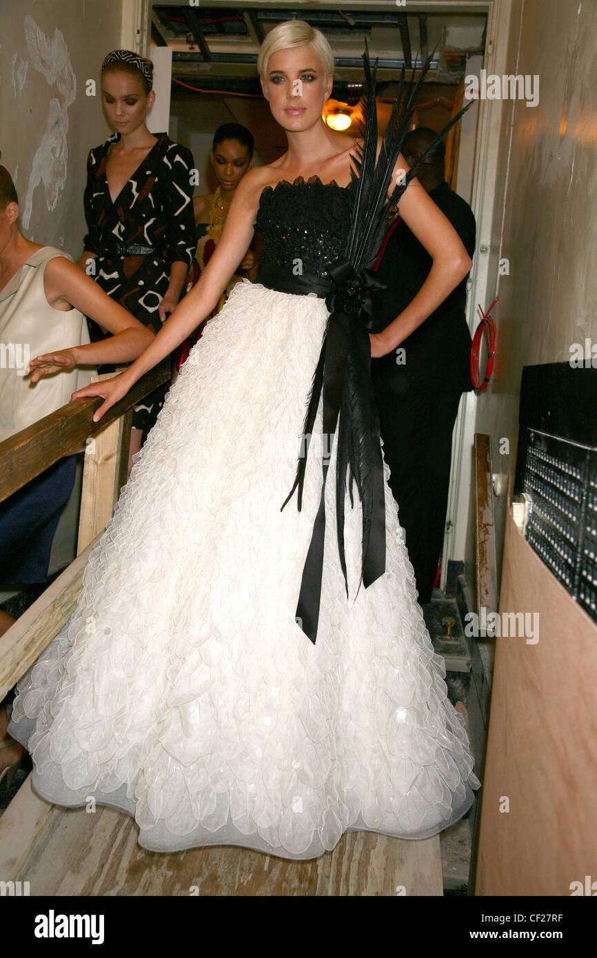 Fashion Model Wearing Evening Gown Stock Photos & Fashion Model ...