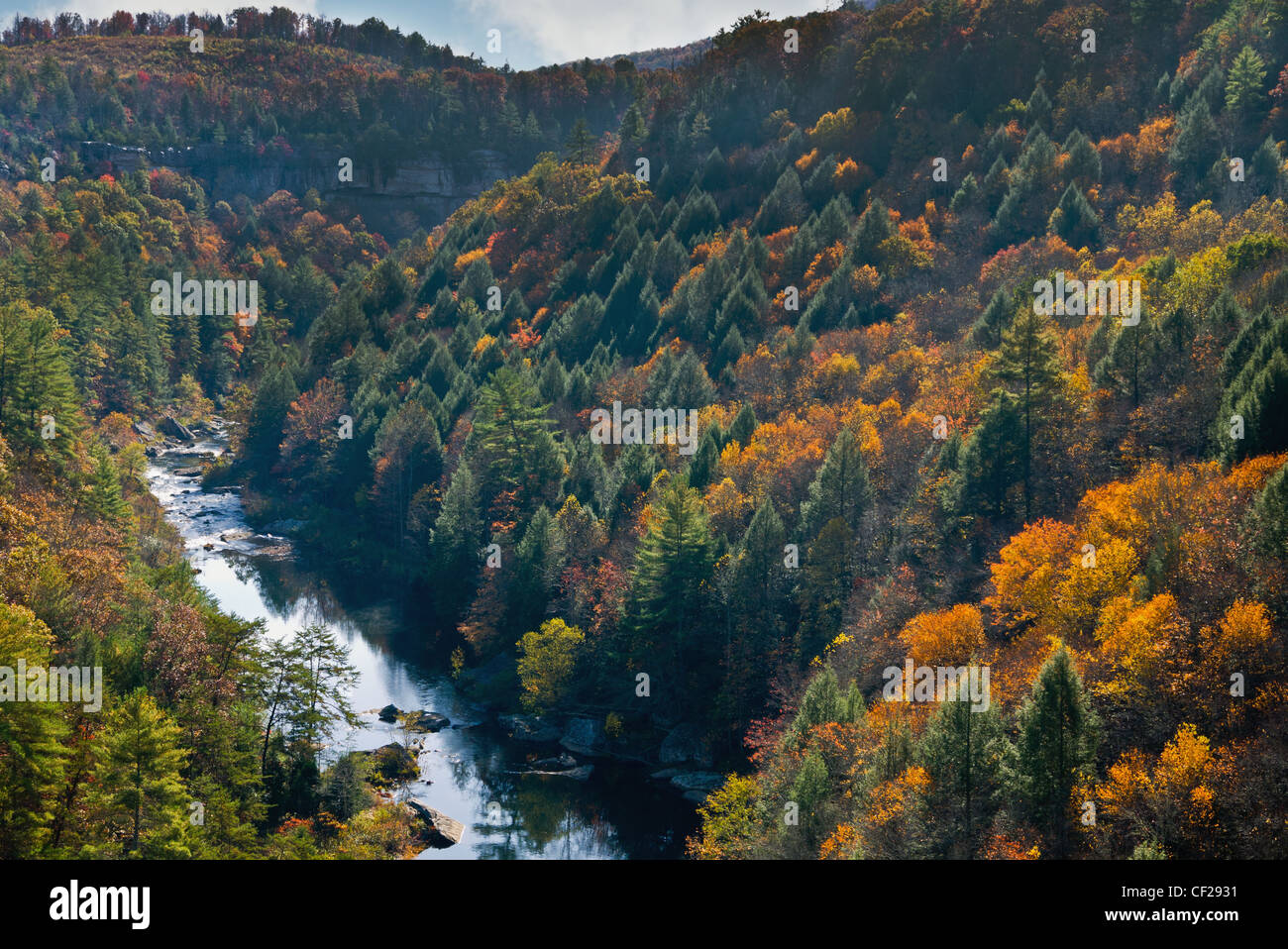 View of river at Obed Wild and Scenic River. Stock Photo