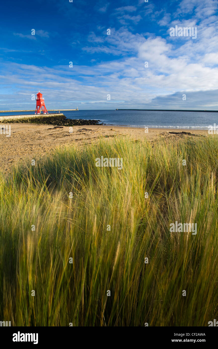 Looking over long grass and sand dunes on Little Haven Beach towards the South Groyne Lighthouse. - Stock Image