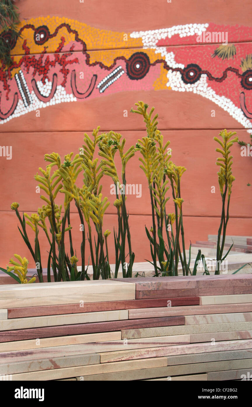 The Flemings and Trailfinders Australian Garden at the RHS Cheslea Flower show The garden was designed by Jamie - Stock Image