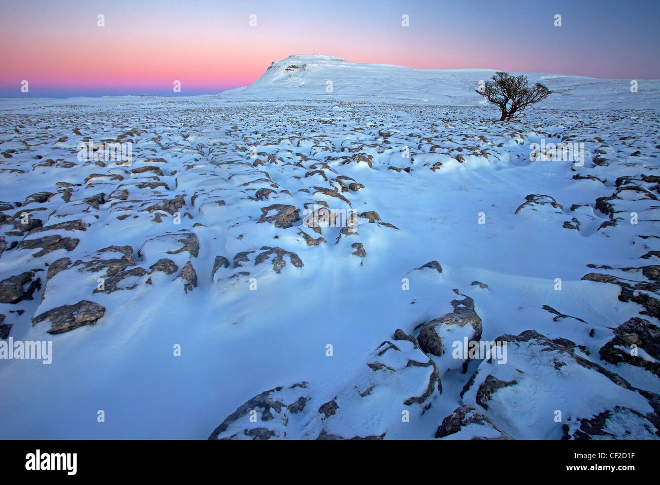 Winter view at sunset towards Ingleborough, one of the Yorkshire Three Peaks from White Scars, a large limestone - Stock Image