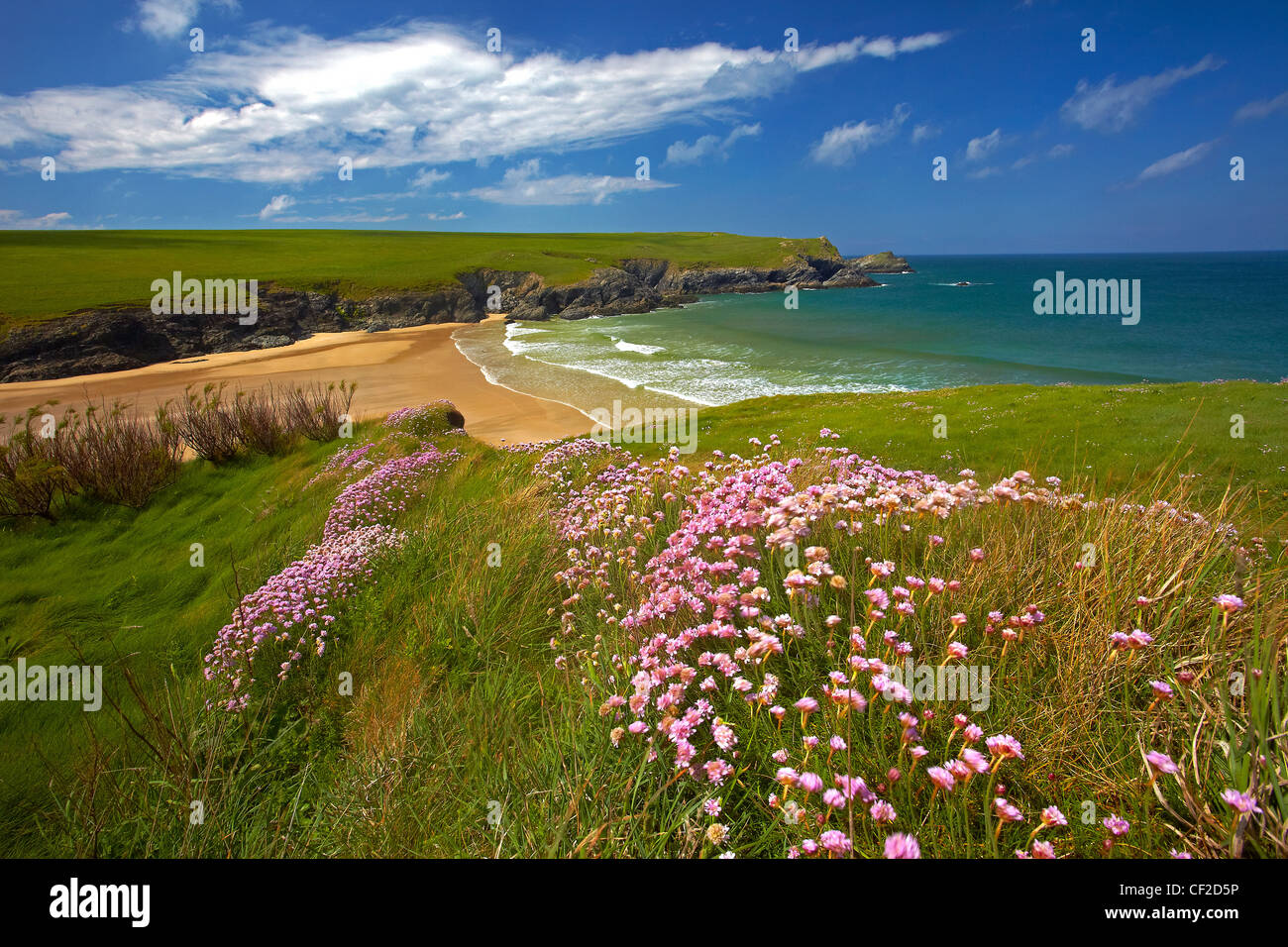 Porth Joke beach between the headlands of Kelsey Head and Pentire Point West. - Stock Image