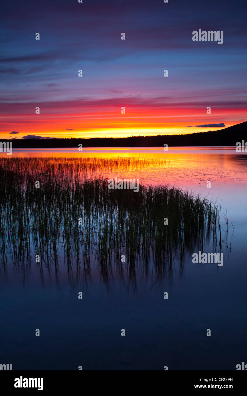 Summer sunset over Loch Morlich near Aviemore in the Cairngorms National Park. - Stock Image