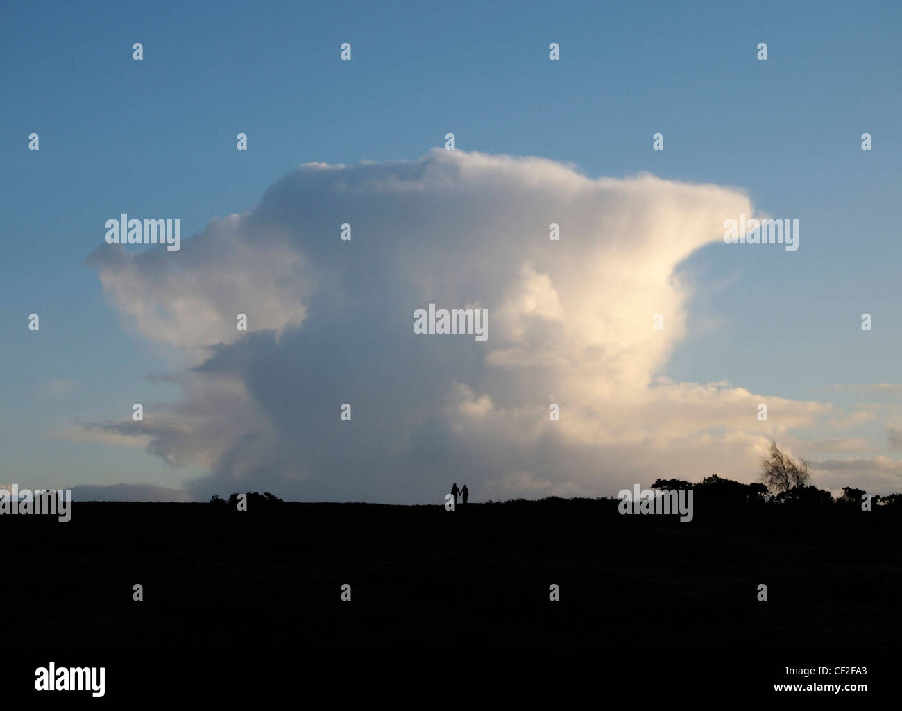 Couple walking in front of cumulonimbus cloud, Longcross Plain, near Fritham, New Forest Stock Photo