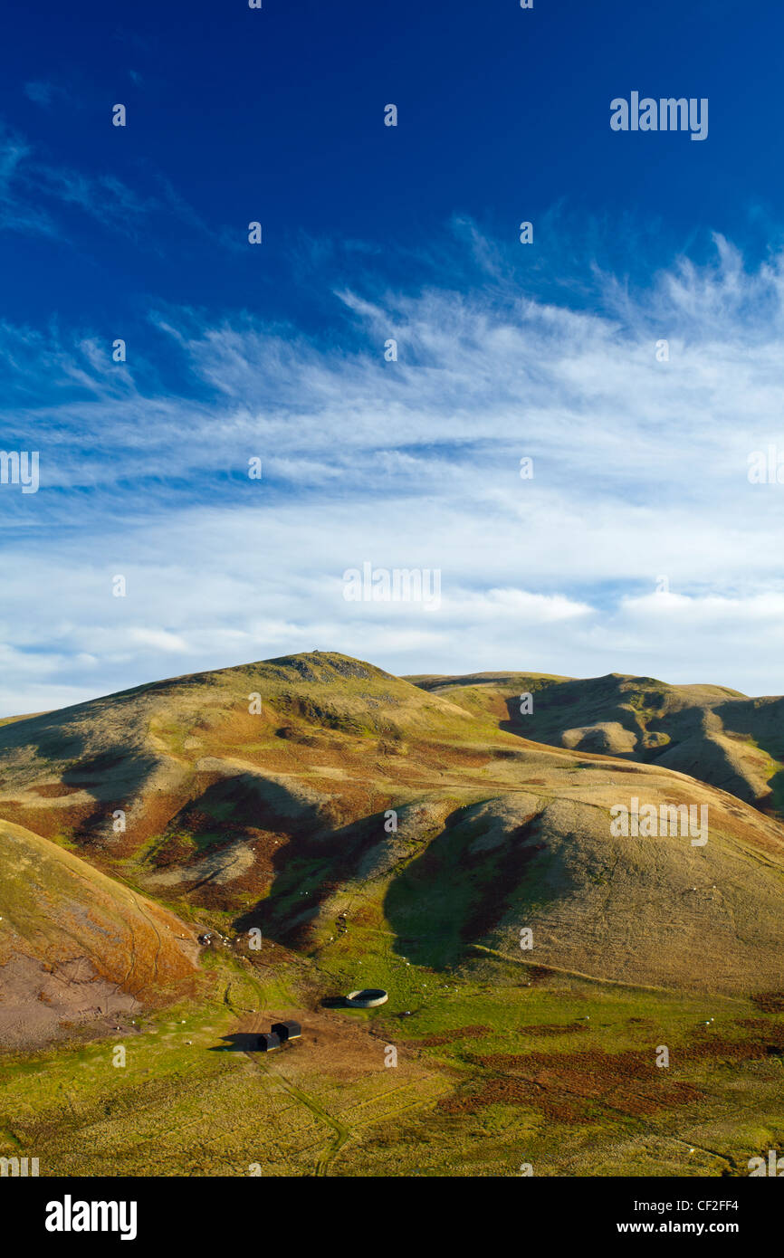 View of Lamb Hill in the Cheviot Hills, part of the Northumberland National Park. - Stock Image