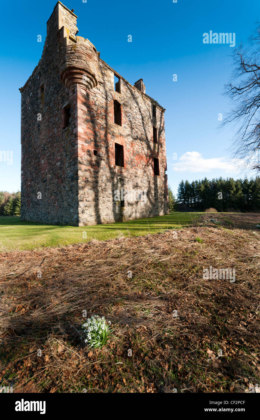 Nice Greenknowe Tower, A 16th Century Tower House Near The Village Of Gordon, In  The