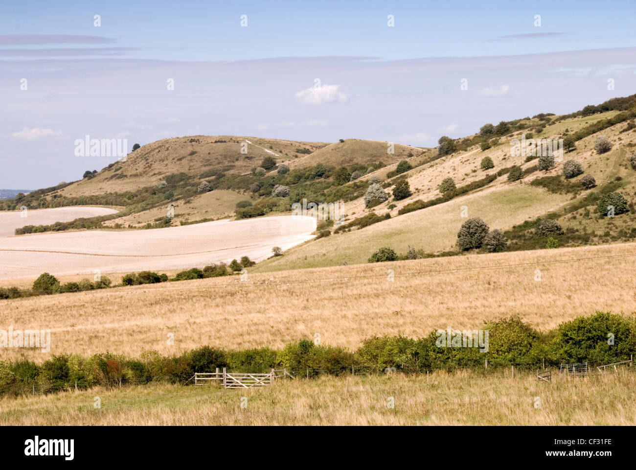 Chiltern Hills - Ivinghoe Beacon - C8 BC ancient hill top fort - start and/or finish of Ridgeway long distance path - Stock Image