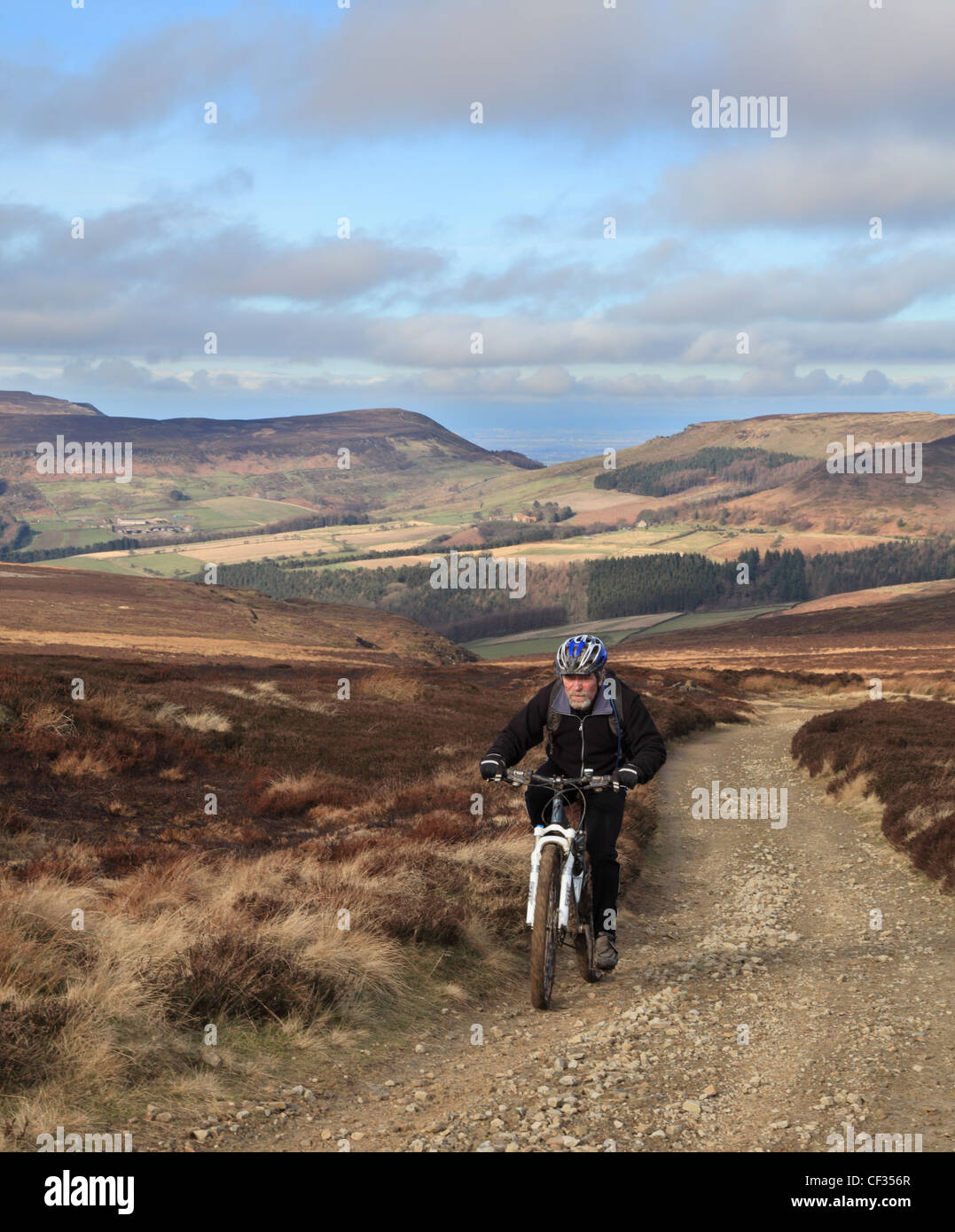 Mature man riding a MTB along the Cleveland Way North Yorkshire Moors England UK - Stock Image