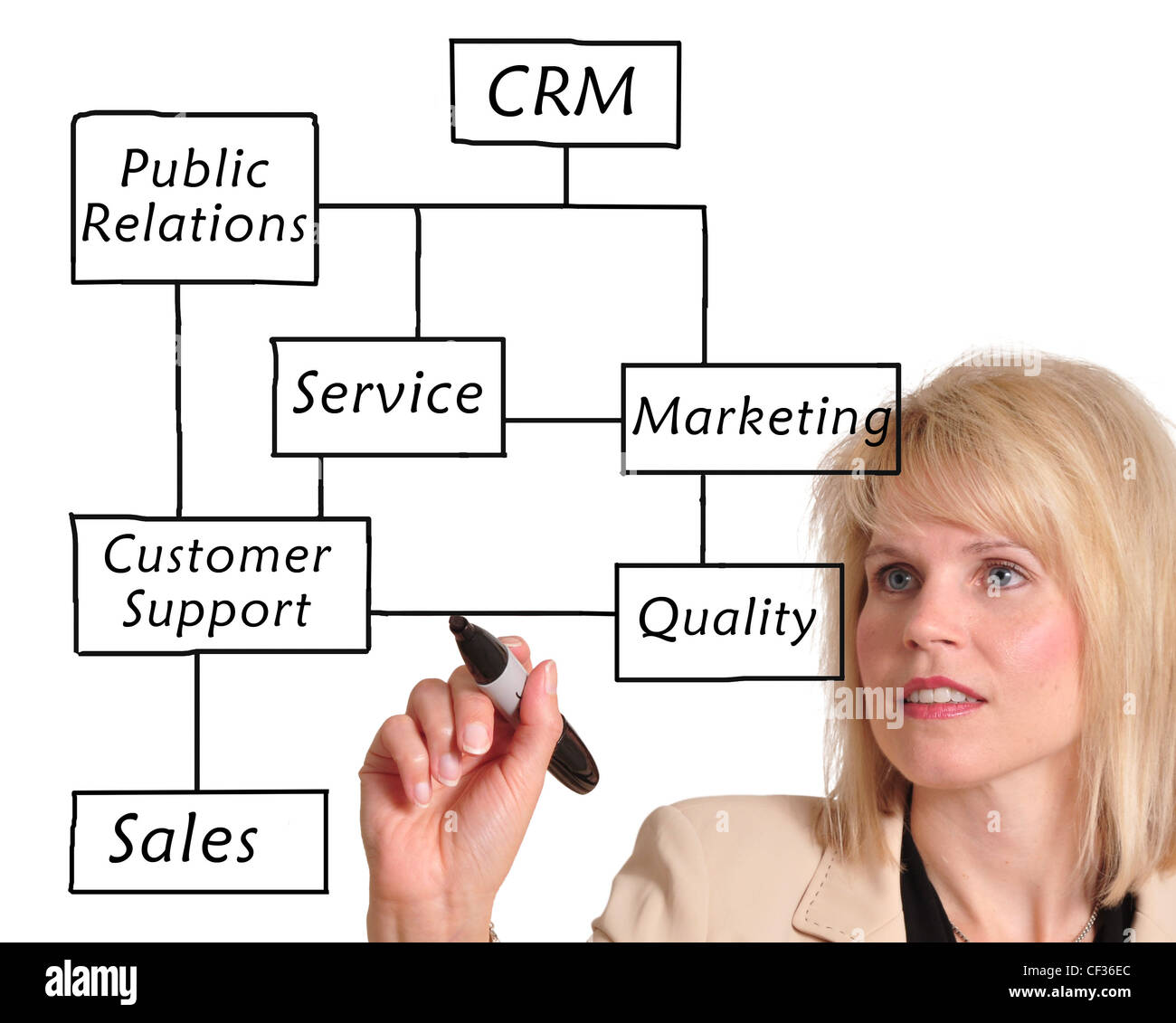 Female executive writing customer relationship management (CRM) concept on a whiteboard - Stock Image