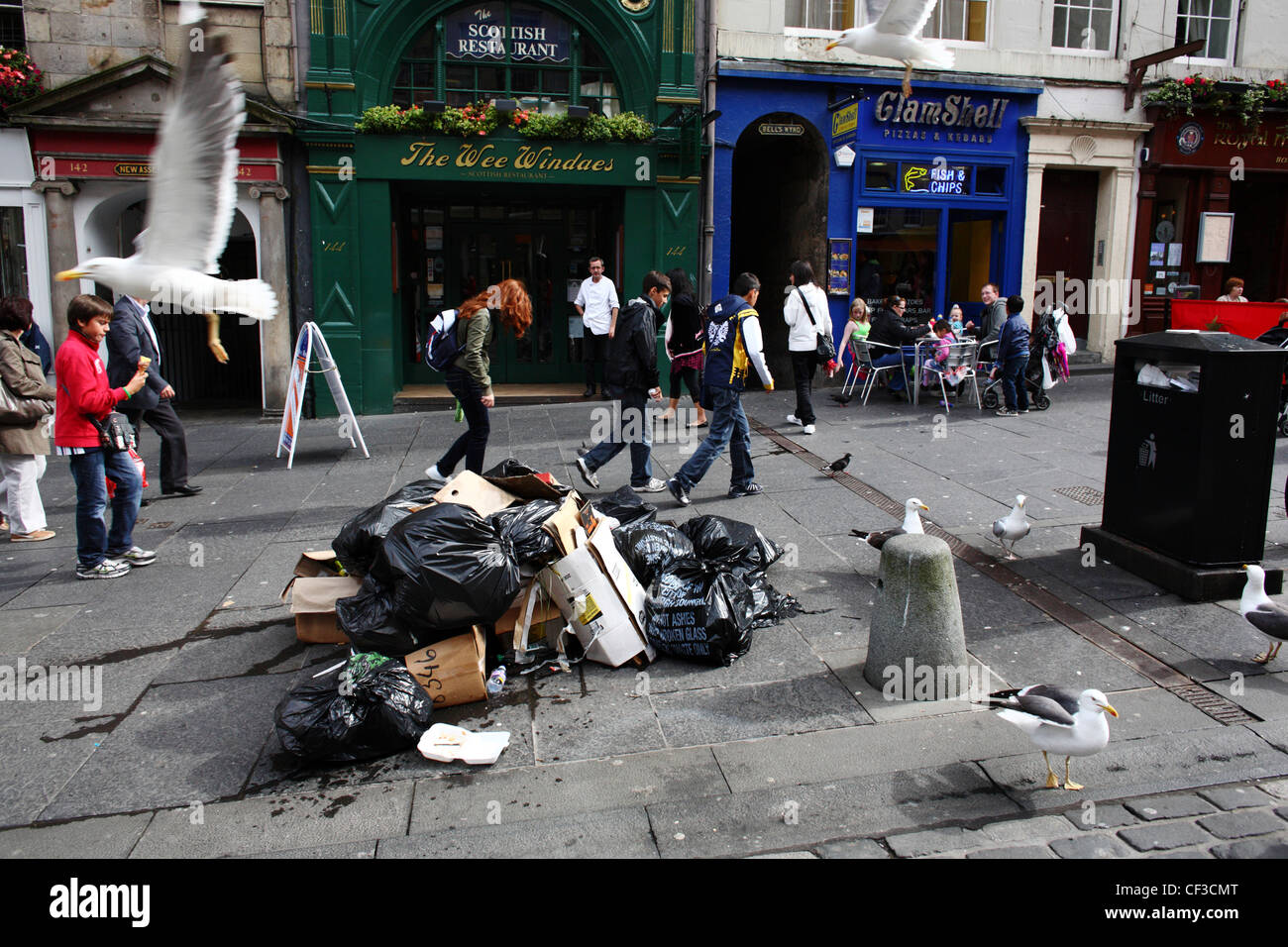 Seagulls looking for food amongst rubbish bags piled on the Royal Mile during a period of industrial action by the - Stock Image