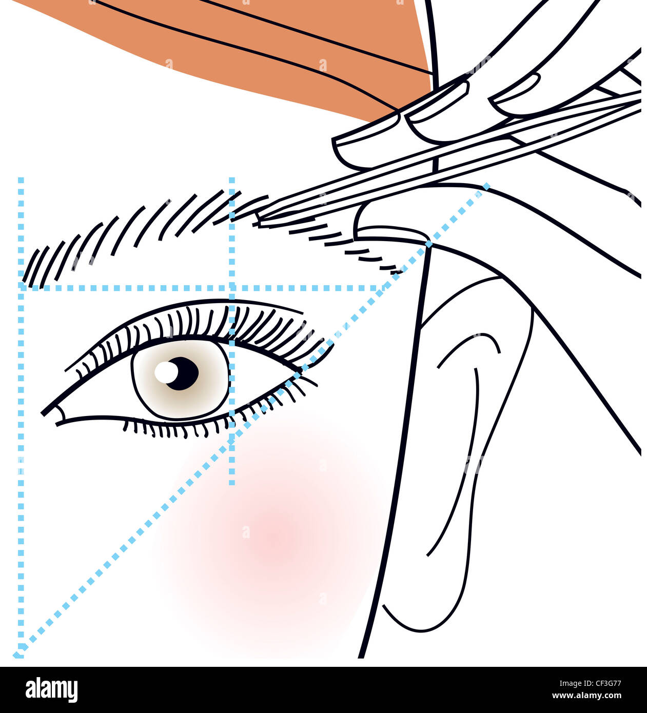 Step by Step How to shape your brows Step Shaping eyebrows with tweezers - Stock Image