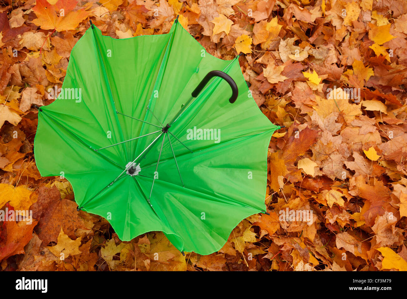 Green opened umbrella lies against yellow autumn leaves. Horizontal format. - Stock Image