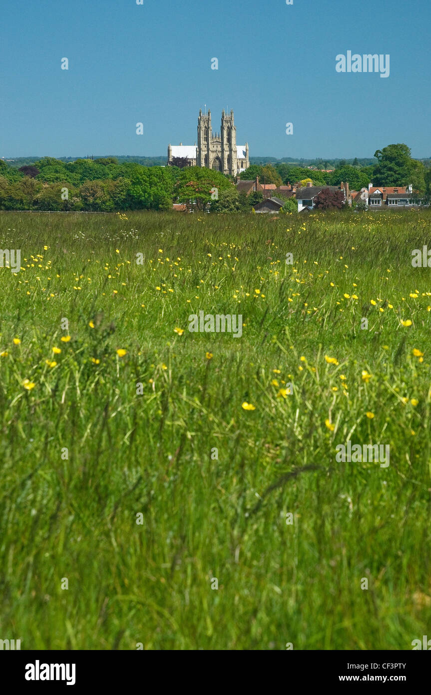 A summer view over pastureland known as Beverly Westwood towards Beverley Minster. - Stock Image