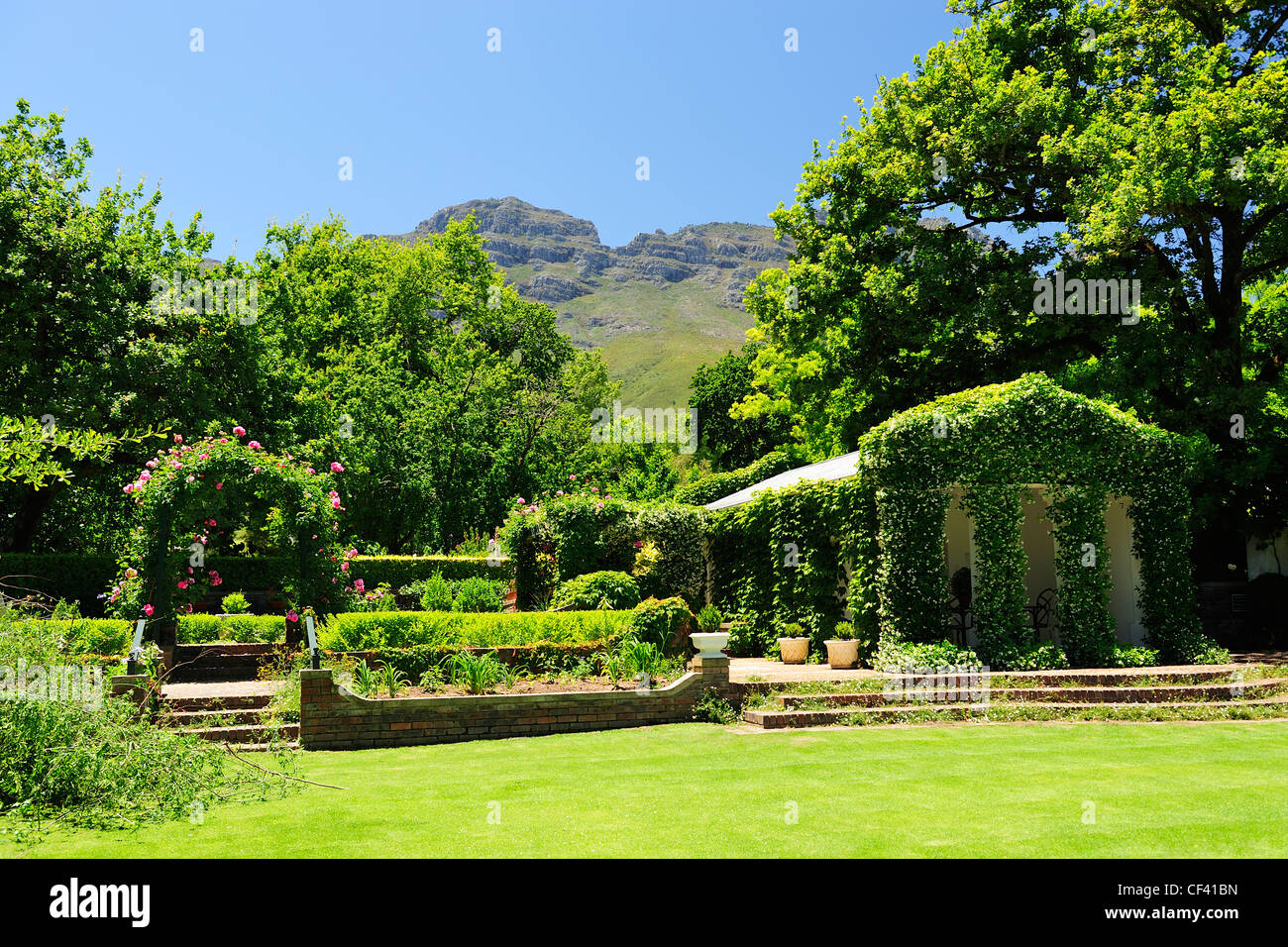 Rustenberg Wine Estate, Stellenbosch, Western Cape, South Africa - Stock Image