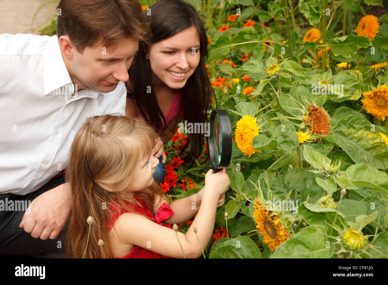 Little girl in red dress considers flower together with parents through magnifying glass. - Stock Image