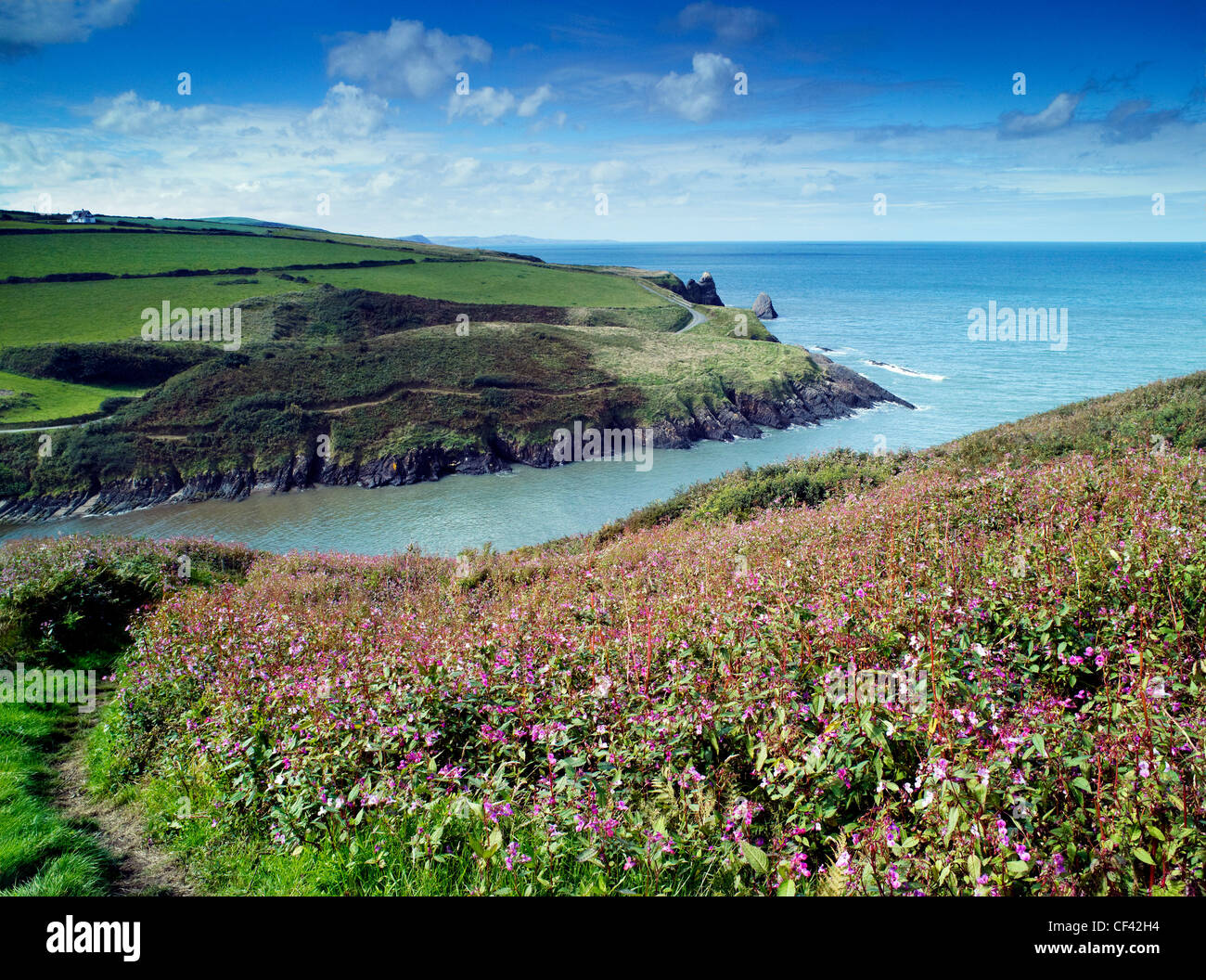 View out to the Irish Sea from the hills and cliffs surrounding Ceibwr Bay. - Stock Image