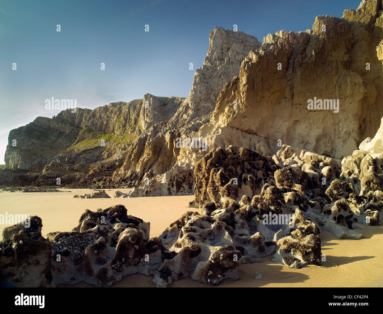 Golden sands by weathered rocks and majestic cliffs in Mewslade Bay. - Stock Image