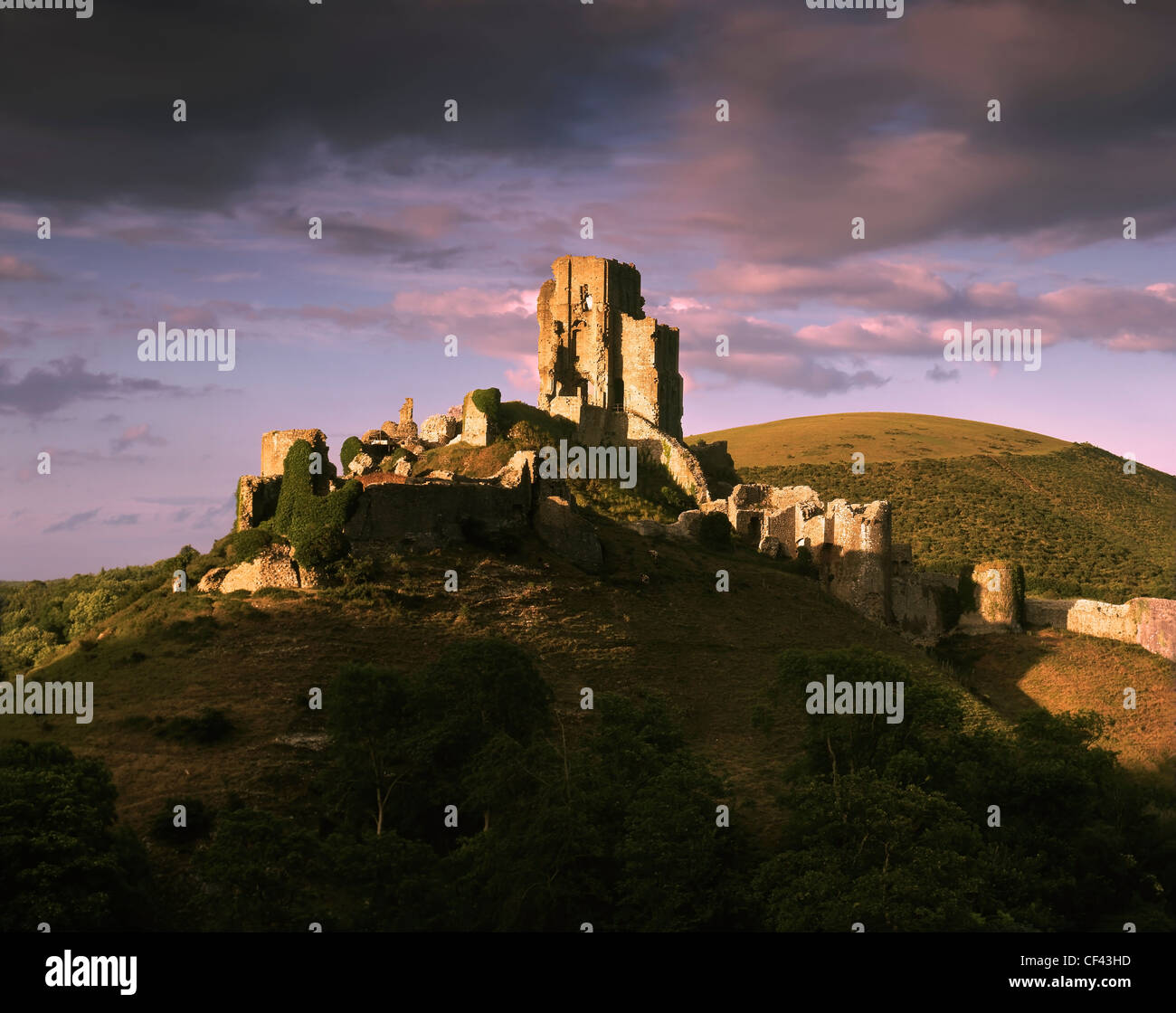 Late evening light on the ruins of the 11th century Corfe Castle in the Purbeck Hills. - Stock Image