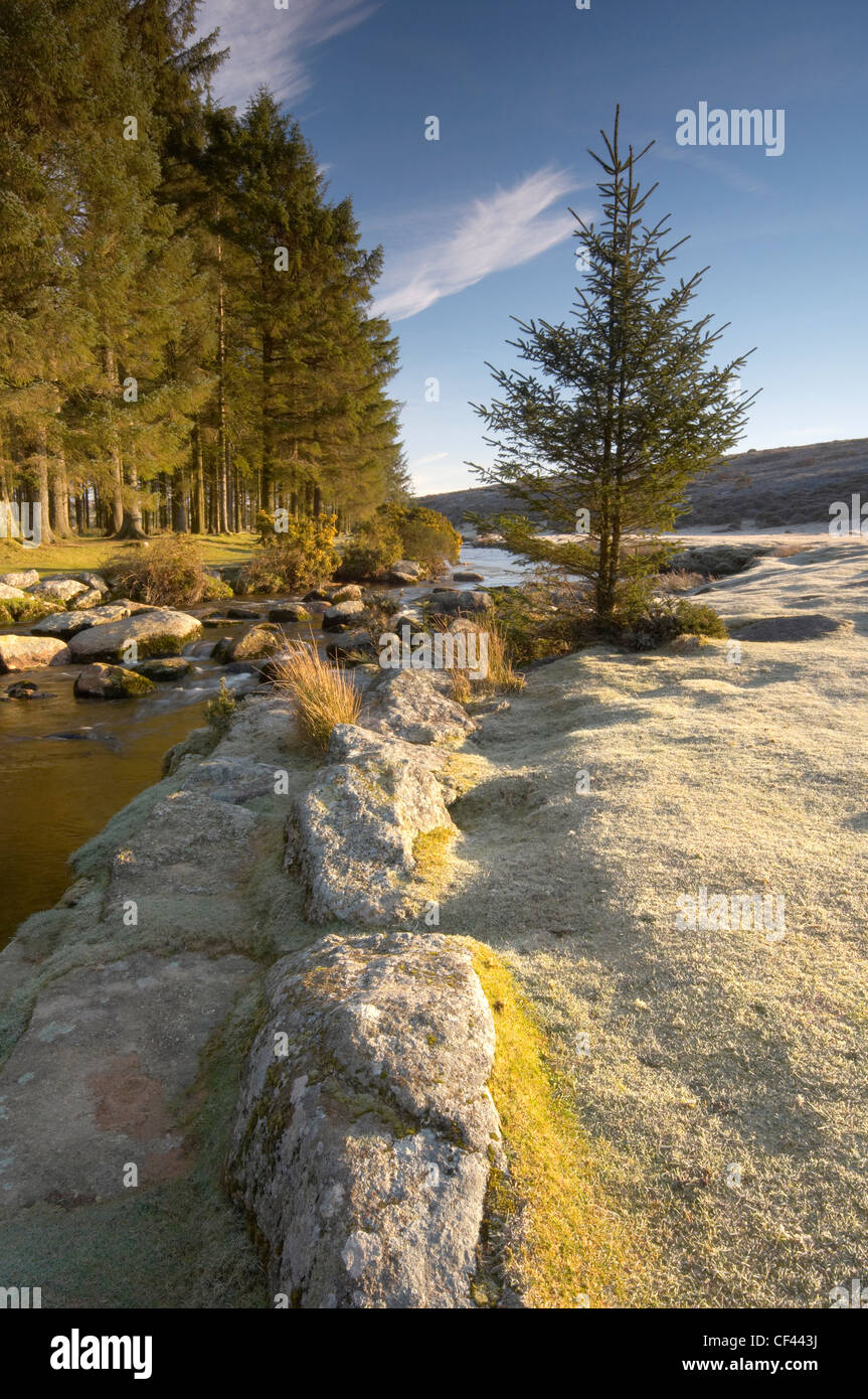 The East Dart river running alongside Bellever Forest on a cold winter morning. - Stock Image