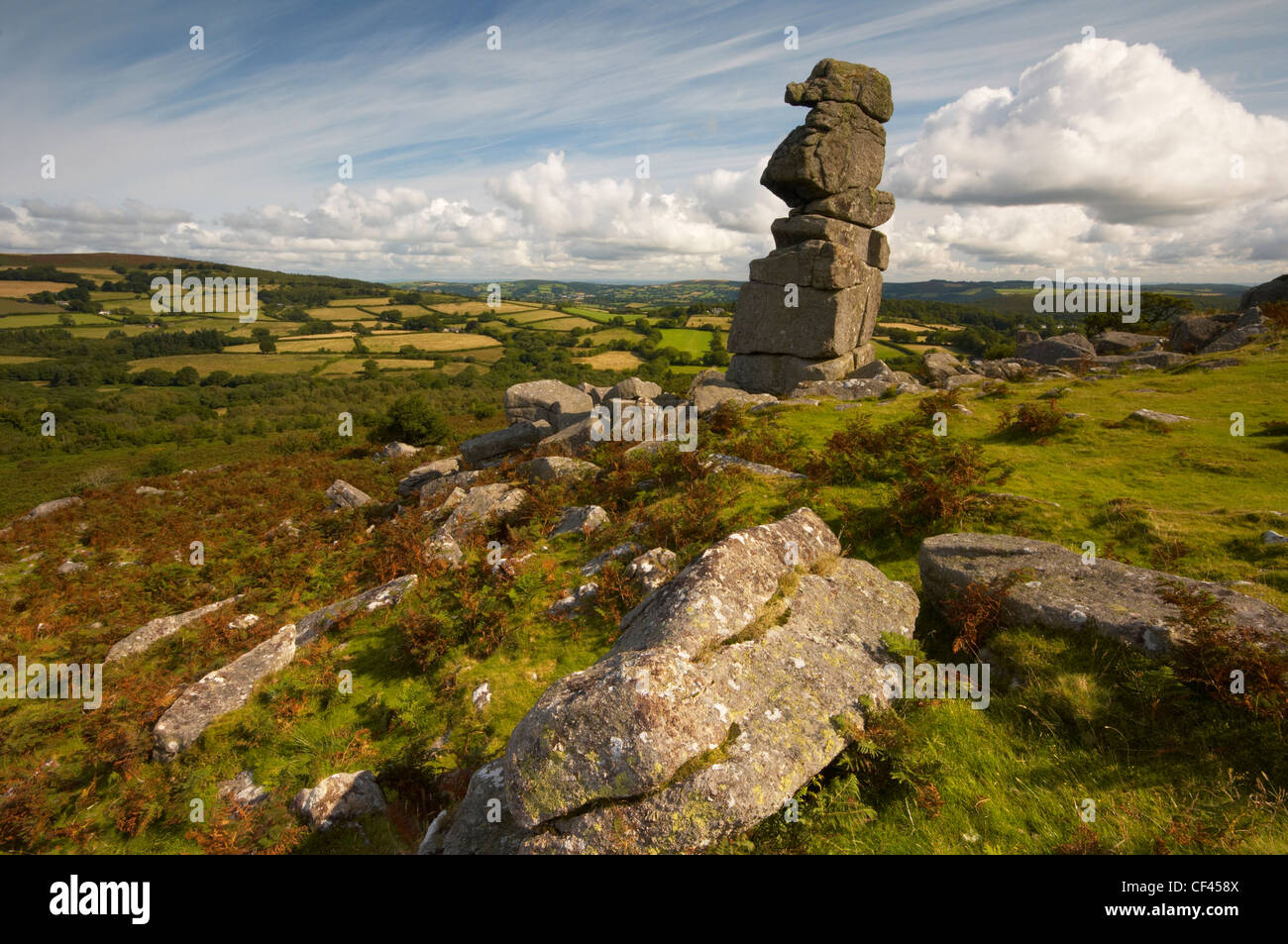 Bowermans Nose, a stack of weathered granite on the northern slopes of Hayne Down on Dartmoor. - Stock Image